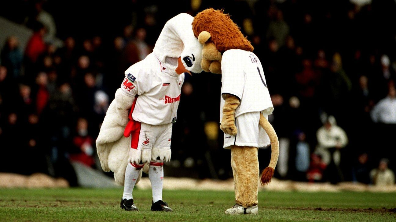 Swansea City's Cyril The Swan and Millwall's Zampa The Lion came to blows on the pitch