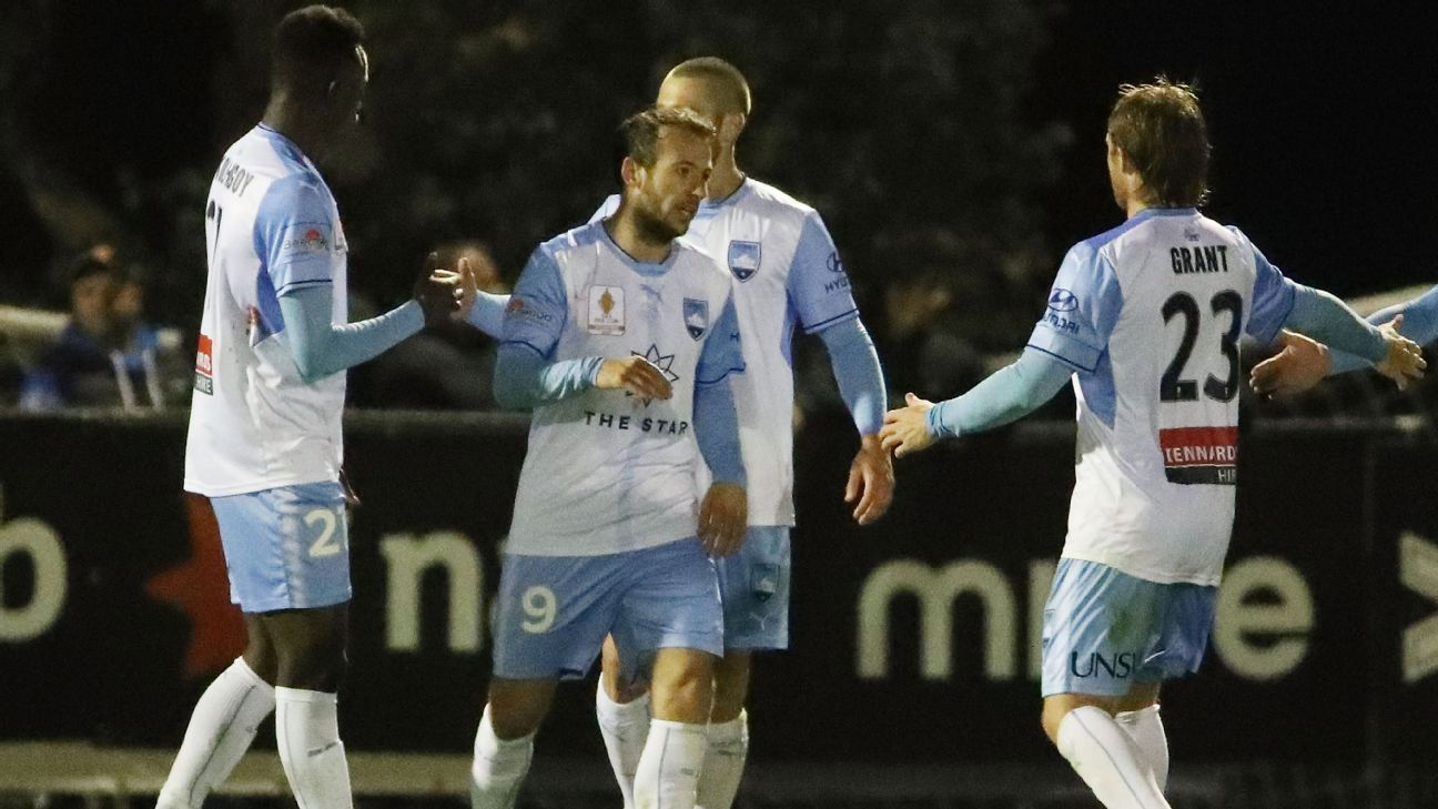 Adam Le Fondre was on target as Sydney FC survived a scare against Avondale FC.