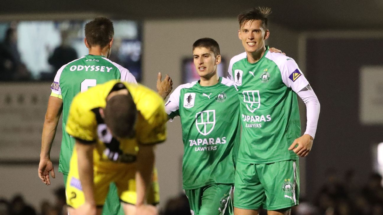Bentleigh Greens celebrate