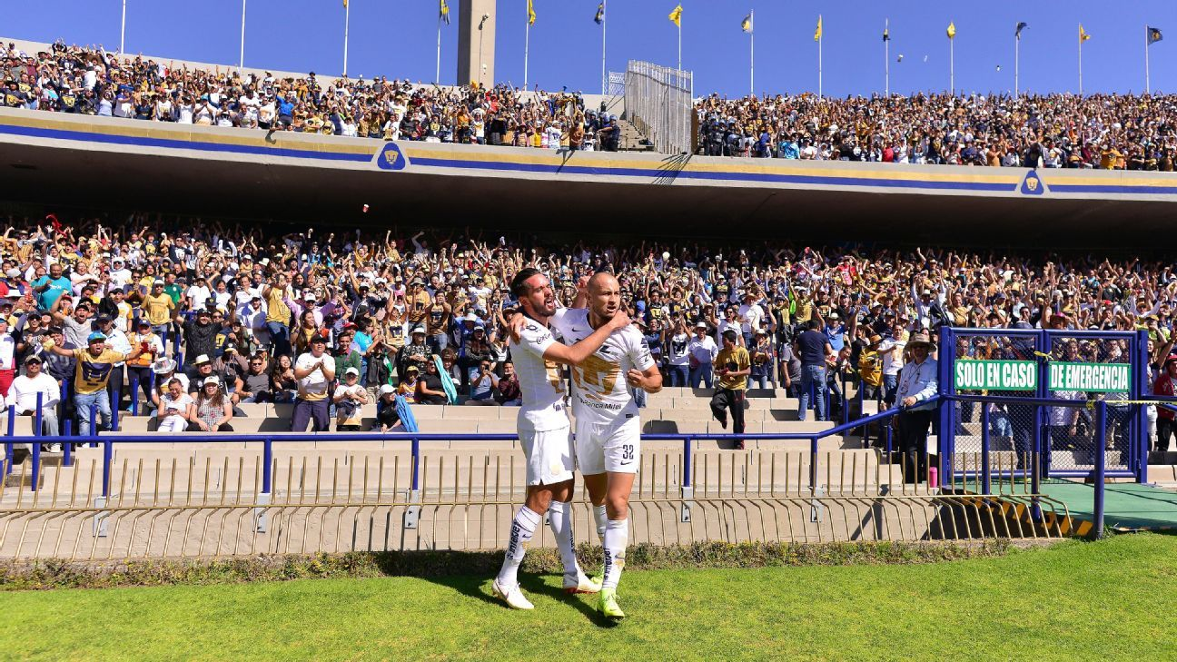 Pumas players celebrate in front of the home crowd after scoring a goal against Tigres.