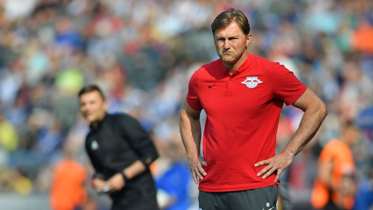 Southampton have appointed Ralph Hasenhuttl as manager following the sacking of Mark Hughes