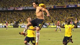 Radamel Falcao celebrates his goal which sent Colombia to the World Cup.