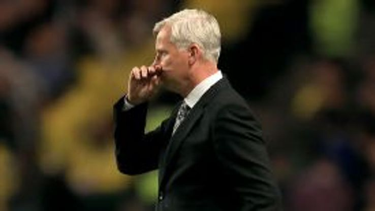 Alan Pardew does not always agree with Mike Ashley's decisions.