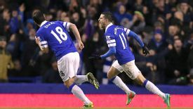 Kevin Mirallas got the winner for Everton against Villa.