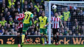 Alex Tettey scored Norwich's opener with a thunderous strike against Sunderland.