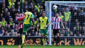 Alex Tettey scored Norwich's opener with a thunderous strike against Sunderland.