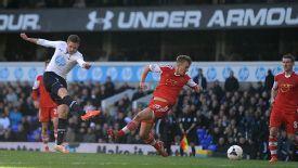 Gylfi Sigurdsson fires home the winning goal for Tottenham.