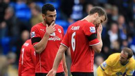 Cardiff suffered a 3-0 defeat at home to Crystal Palace on April 5.