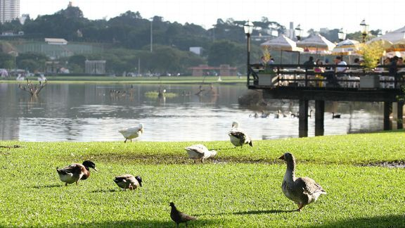View of the Barigui Park in Curitiba.