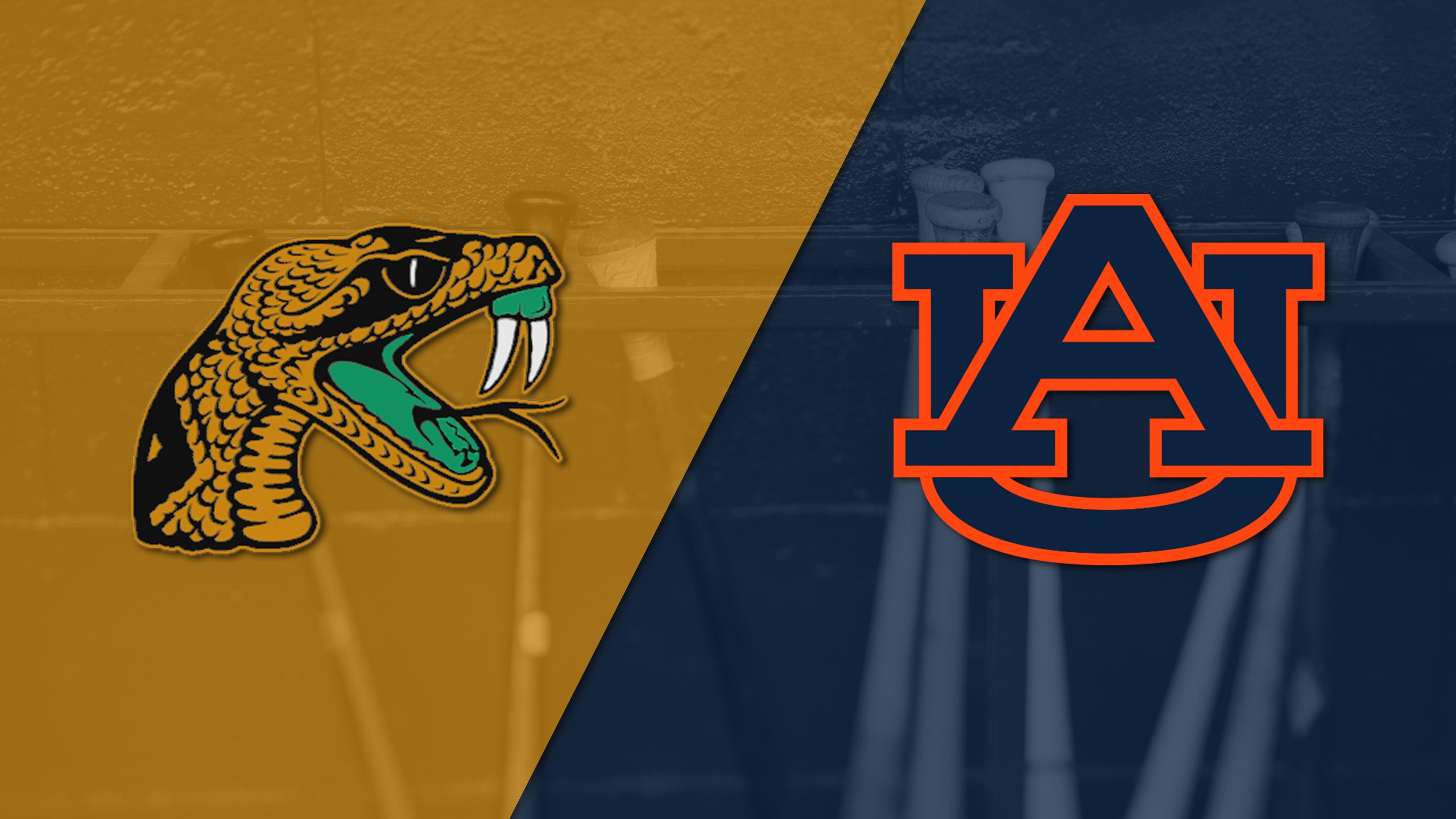 Florida A&M vs. Auburn (Baseball)