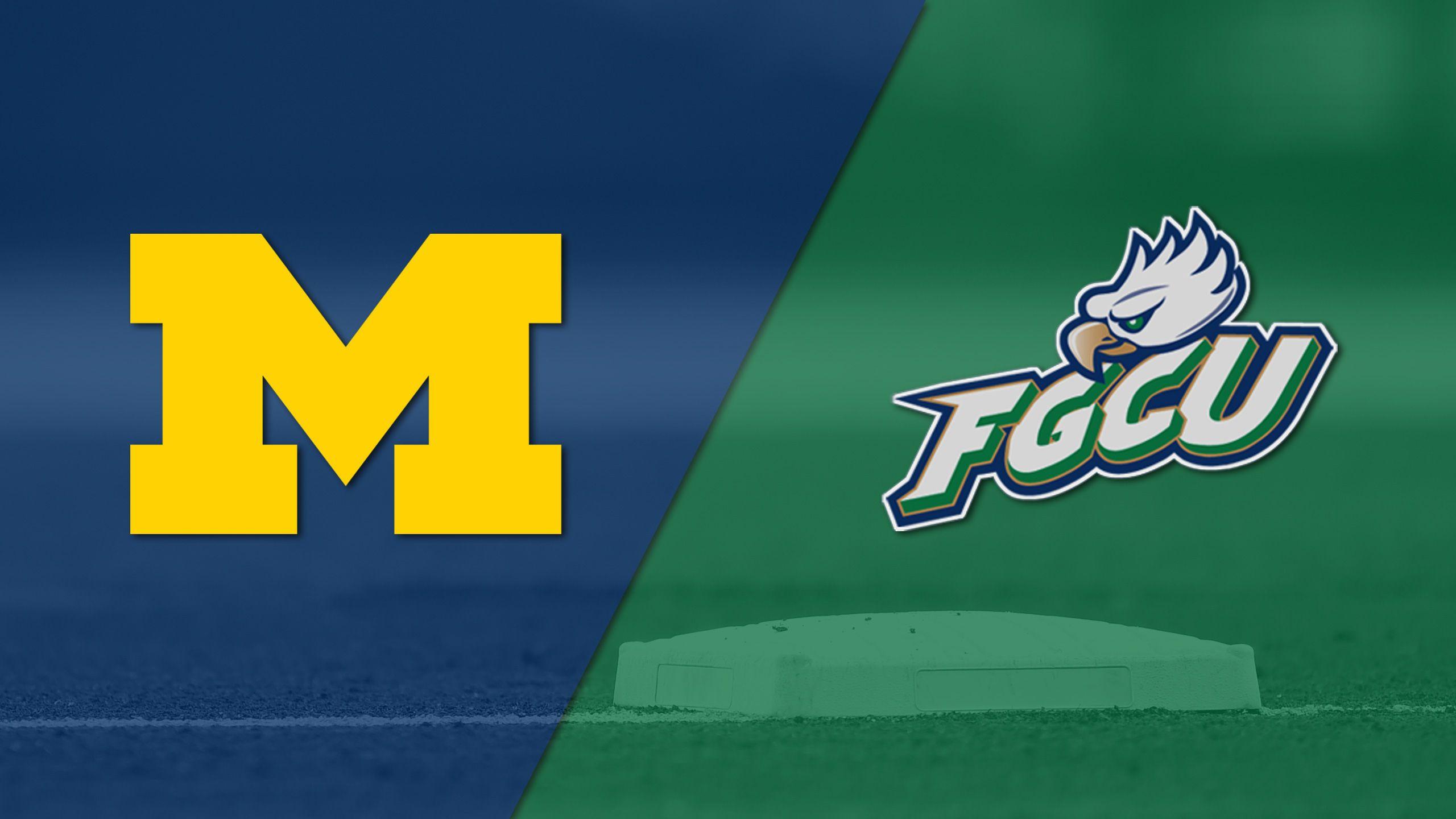 Michigan vs. Florida Gulf Coast (Site 9 / Game 1) (NCAA Baseball Championship)