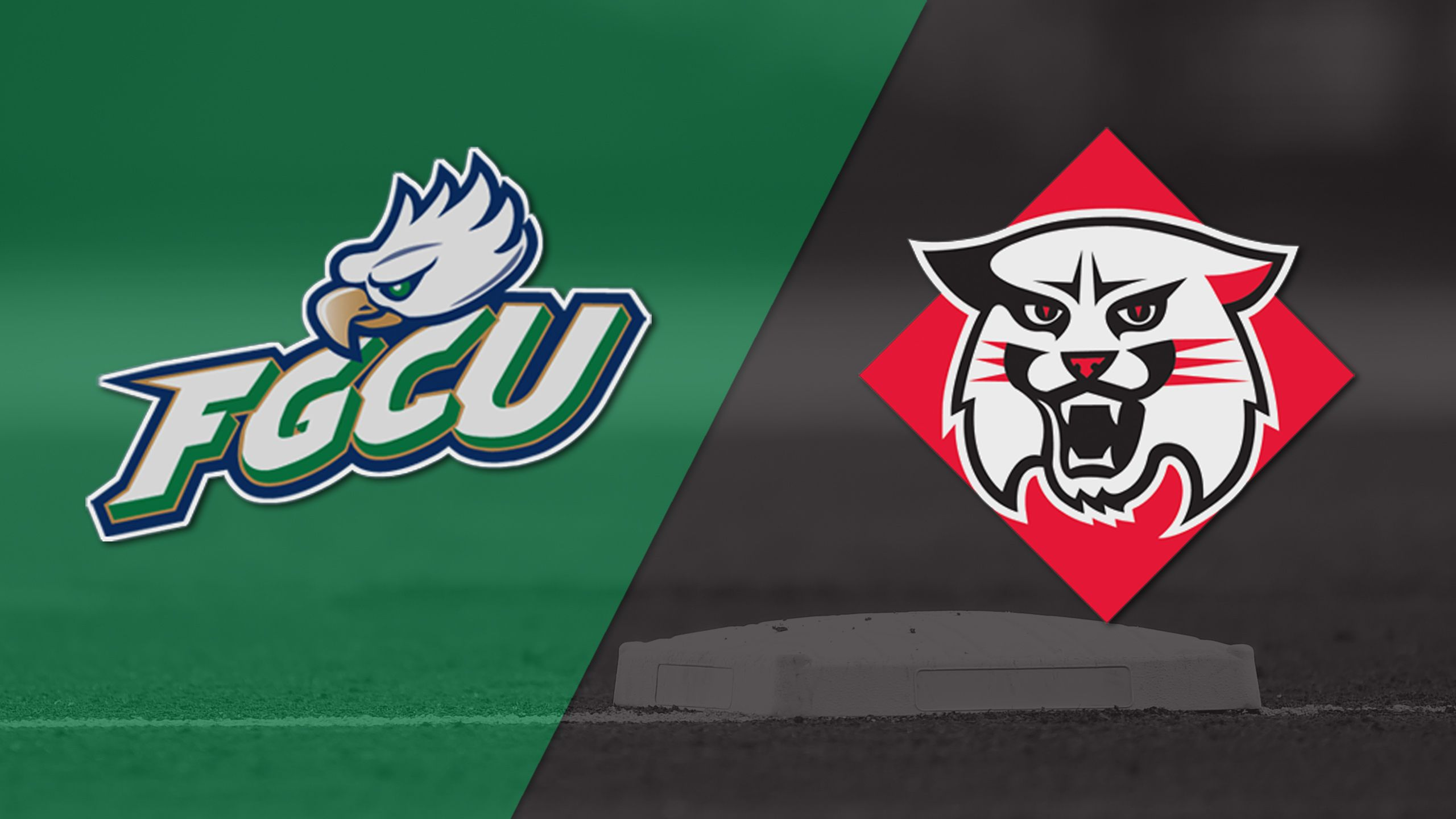 Florida Gulf Coast vs. Davidson (Site 9 / Game 4) (NCAA Baseball Championship)