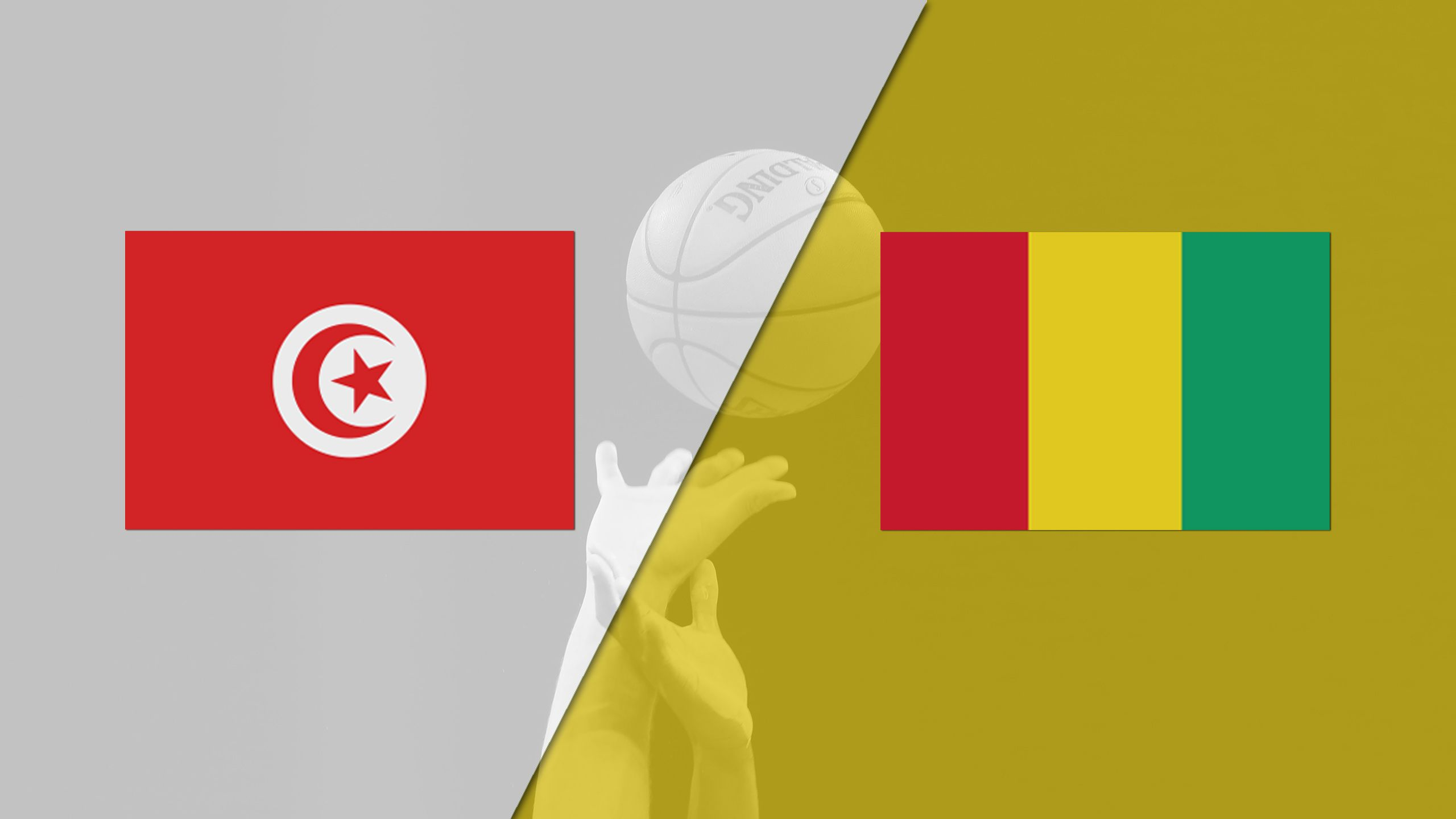 Tunisia vs. Guinea (FIBA World Cup 2019 Qualifier)