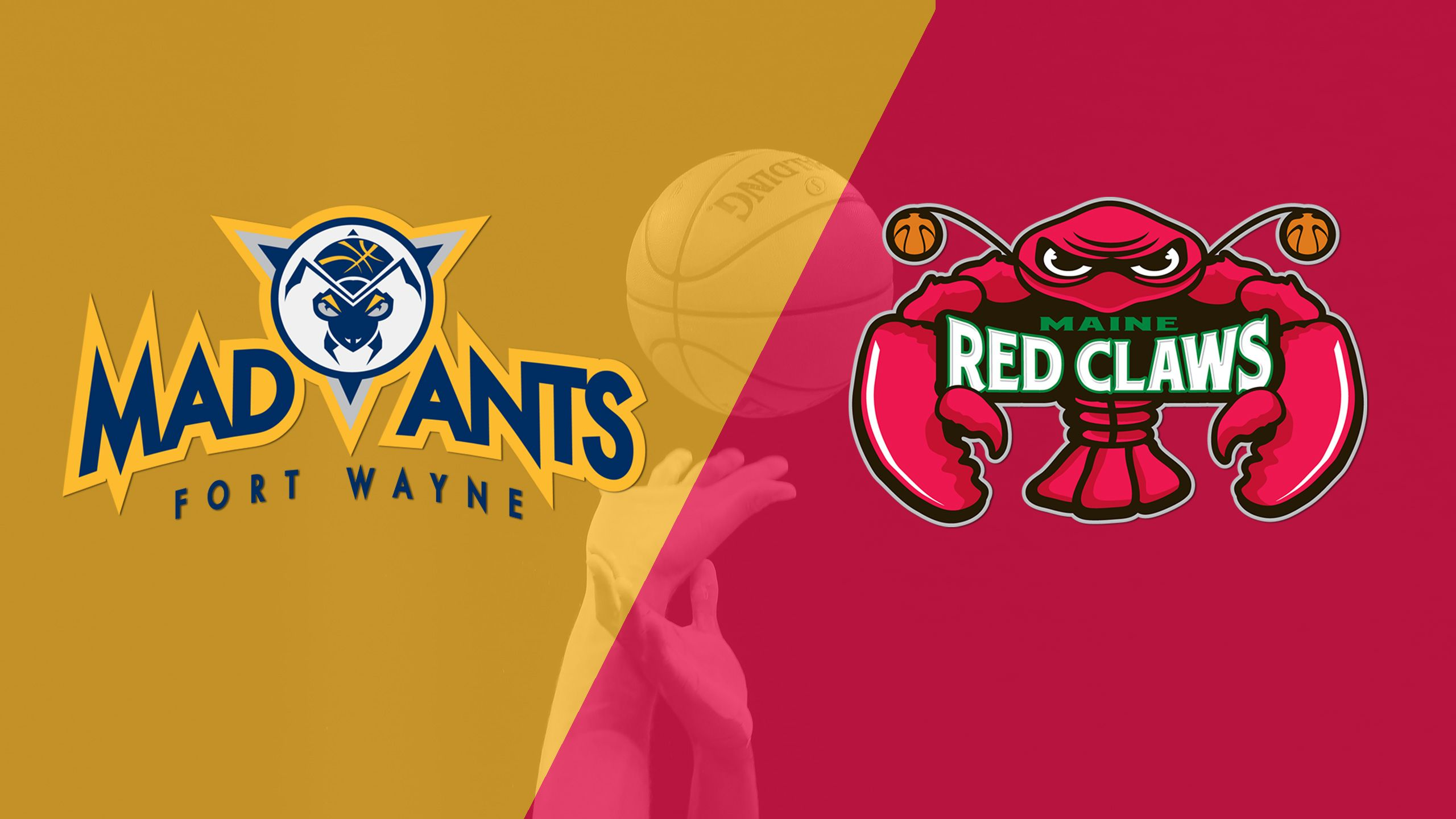 Fort Wayne Mad Ants vs. Maine Red Claws