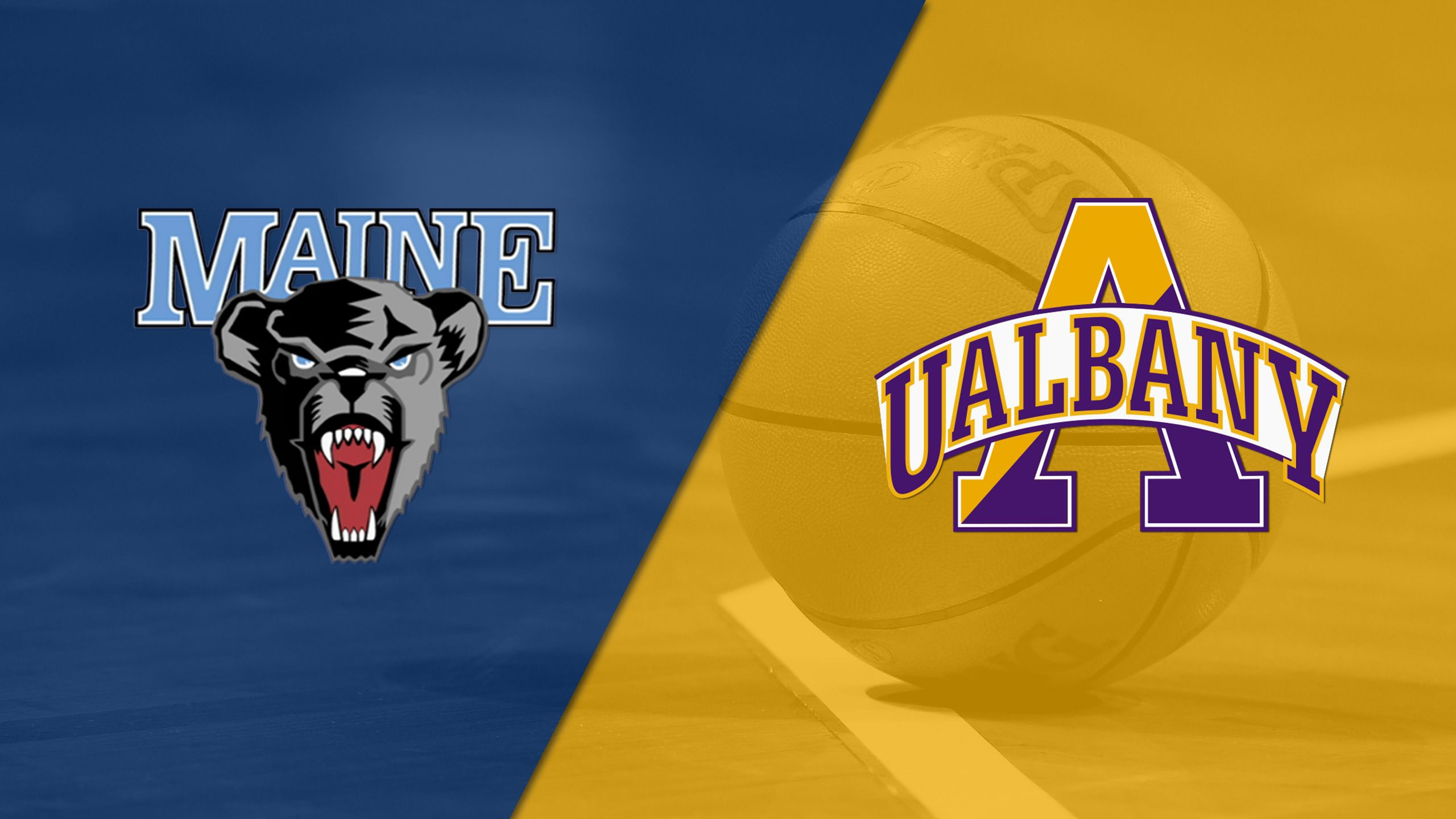 Maine vs. Albany (M Basketball)