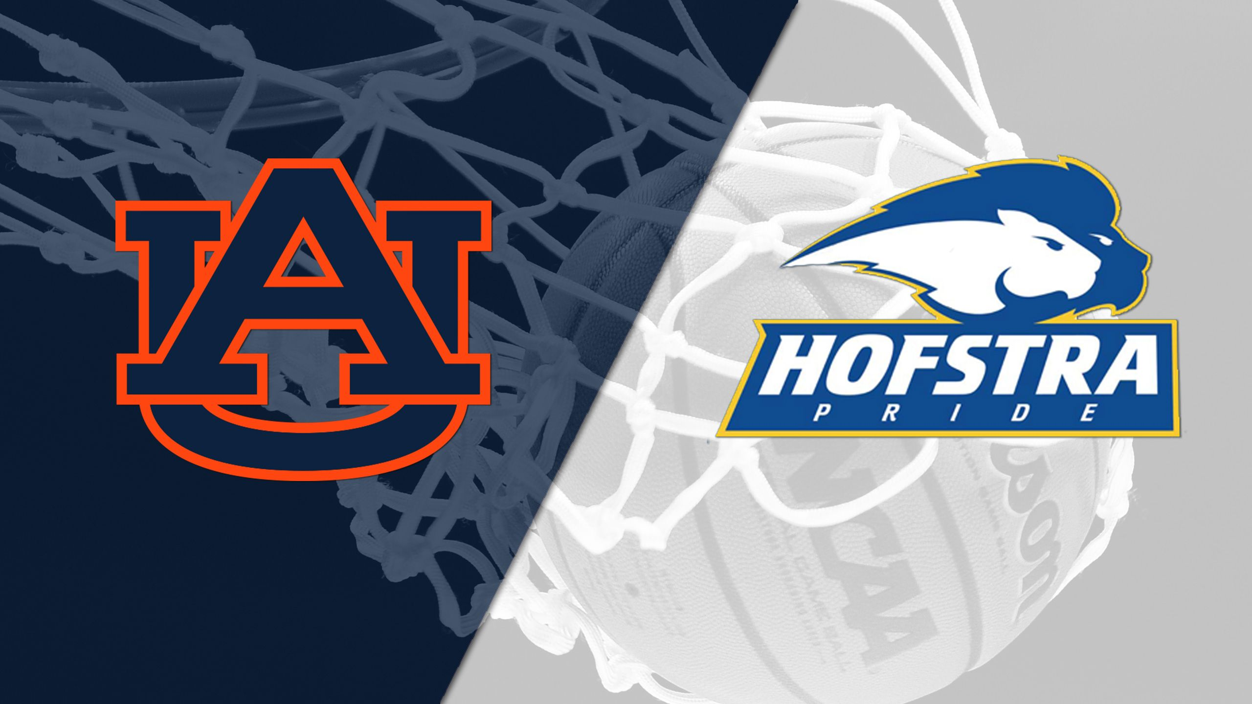 Auburn vs. Hofstra (Third Place) (Gildan Charleston Classic)