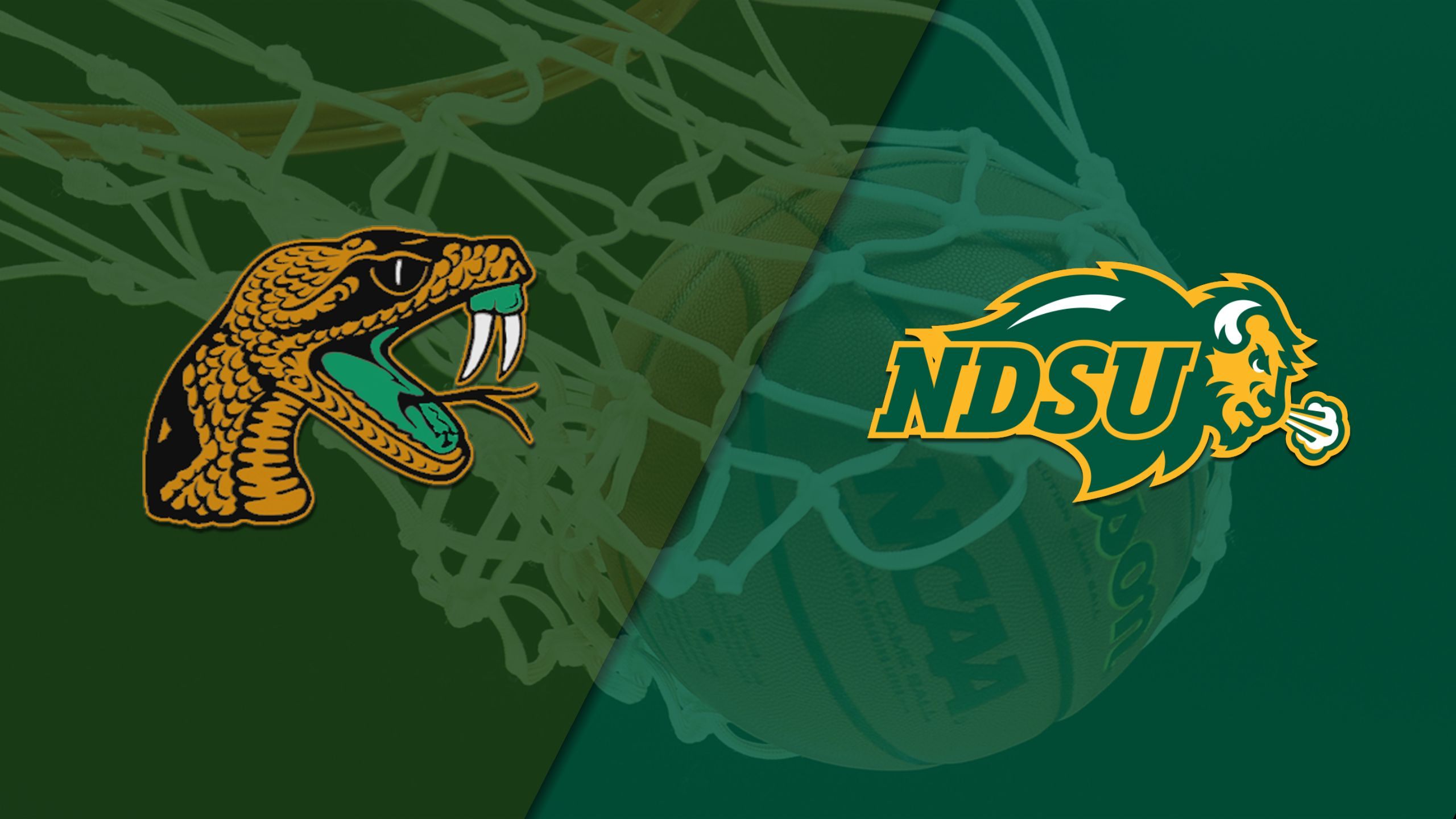 Florida A&M vs. North Dakota State (M Basketball)