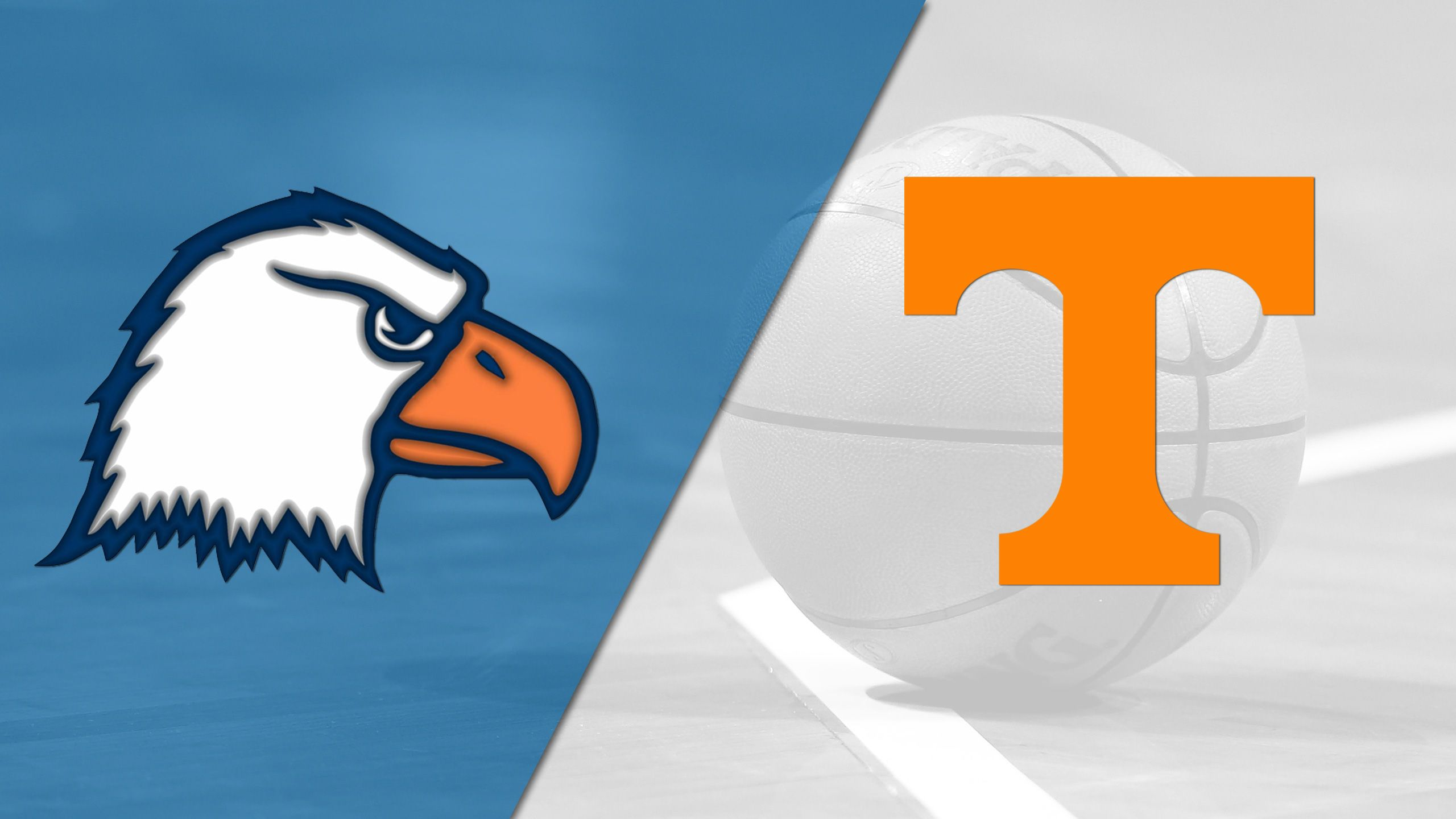 Carson-Newman vs. #13 Tennessee (W Basketball)