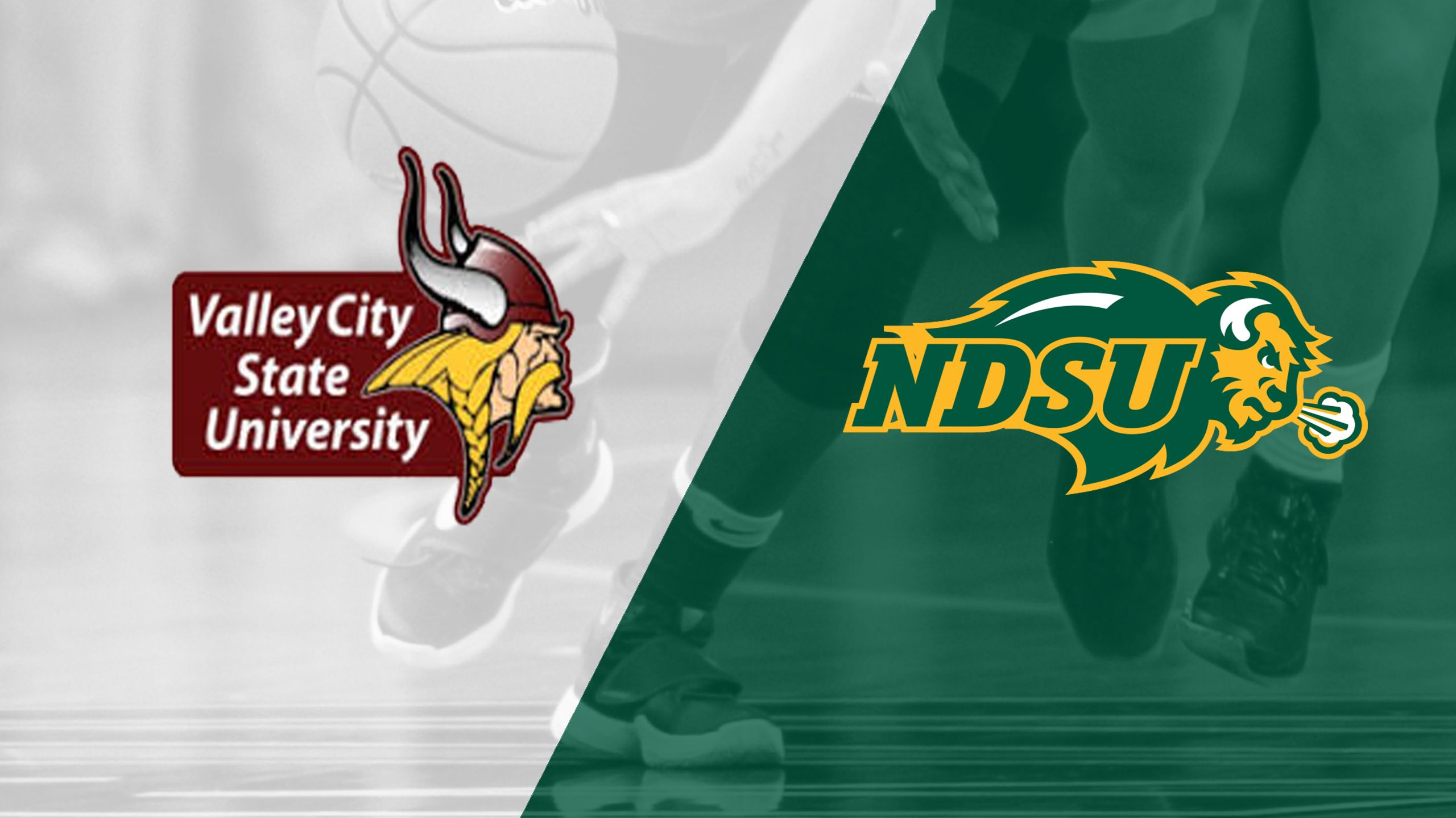 Valley City State vs. North Dakota State (W Basketball)