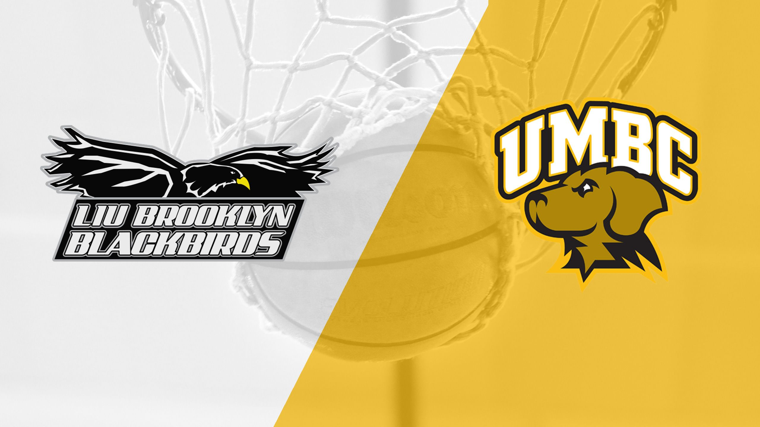 LIU Brooklyn vs. UMBC (W Basketball)