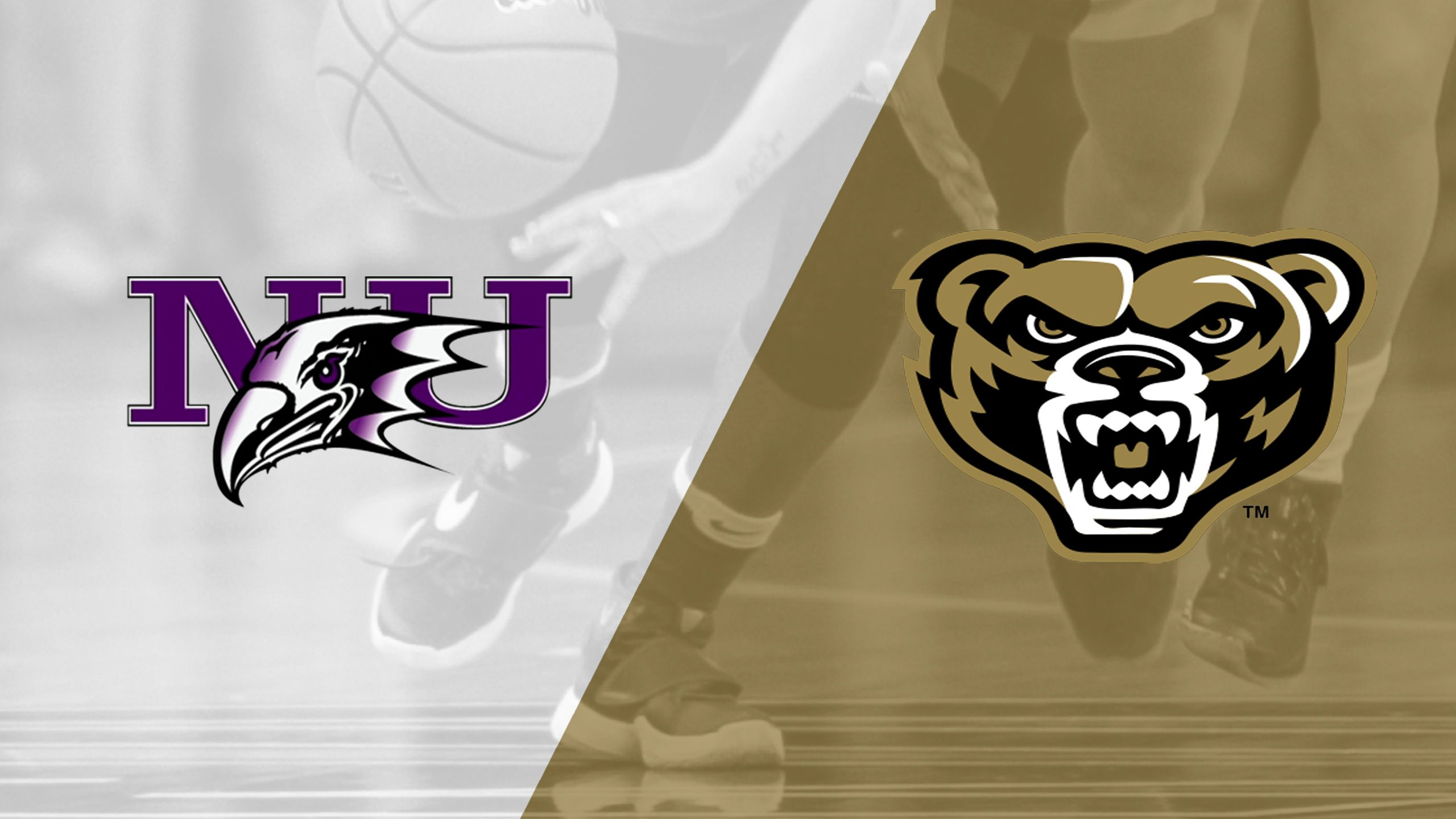 Niagara vs. Oakland (W Basketball)