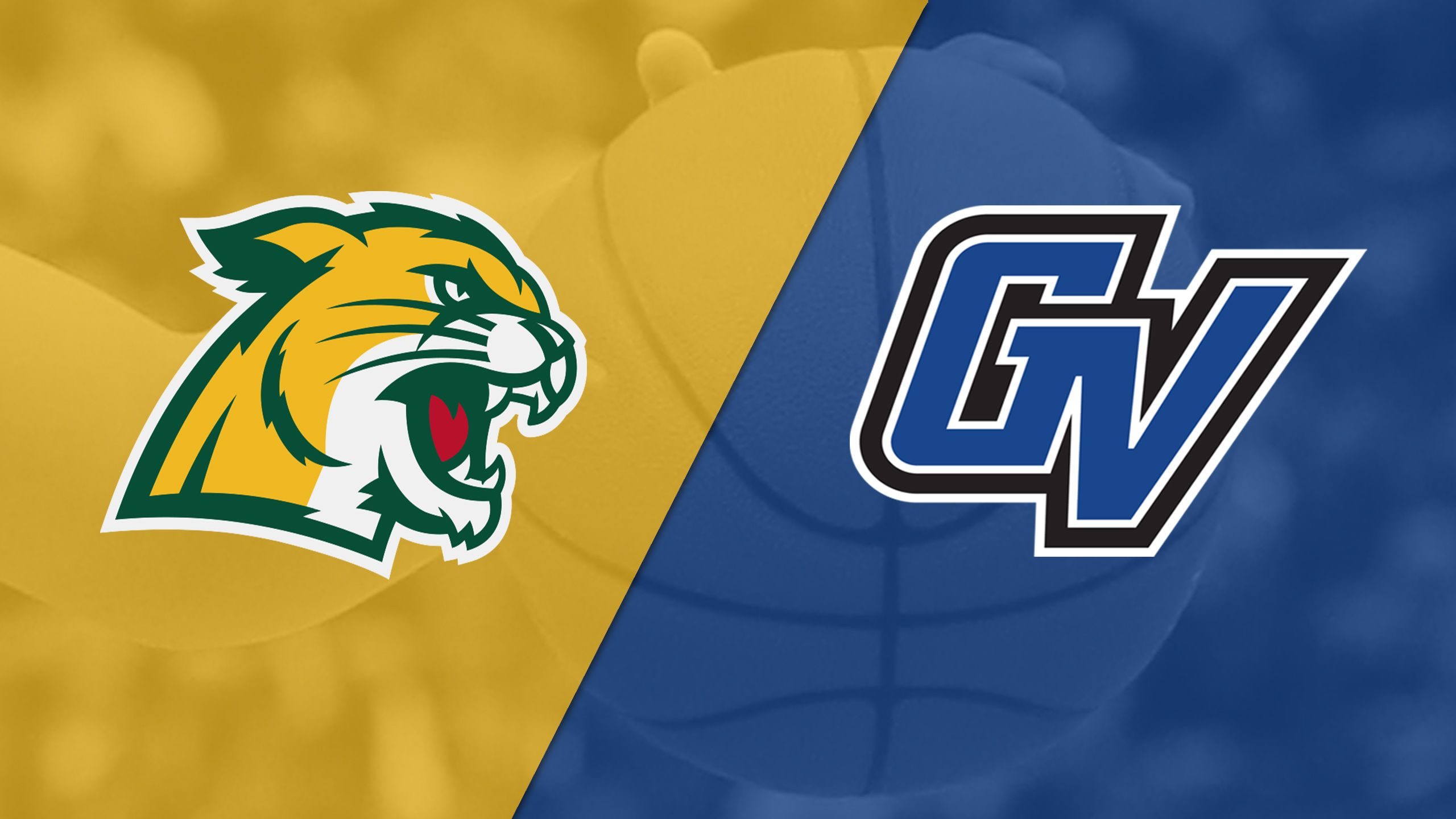 Northern Michigan vs. Grand Valley State (W Basketball)