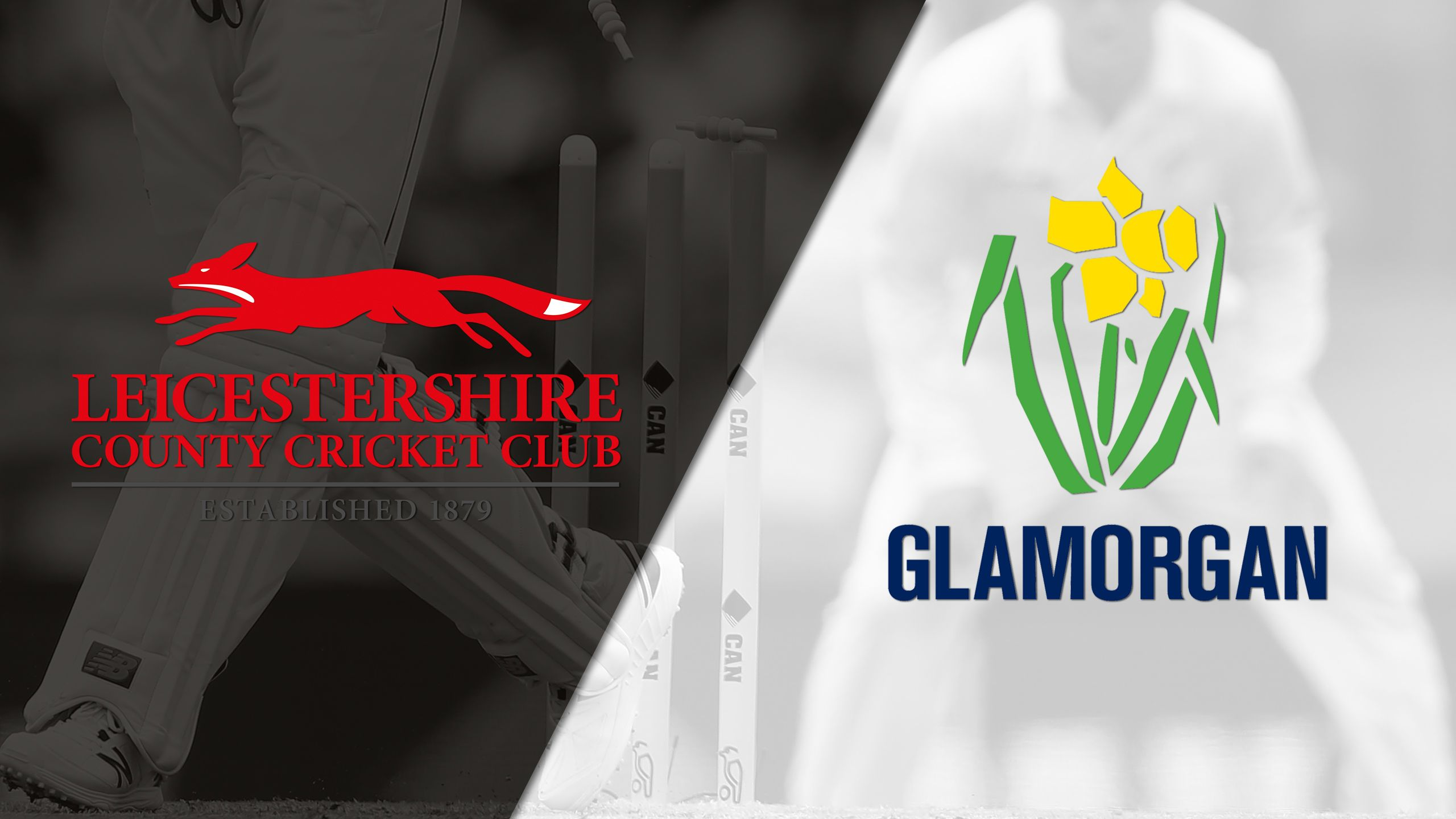 Leicestershire vs. Glamorgan (Quarterfinals) (NatWest T20 Blast)