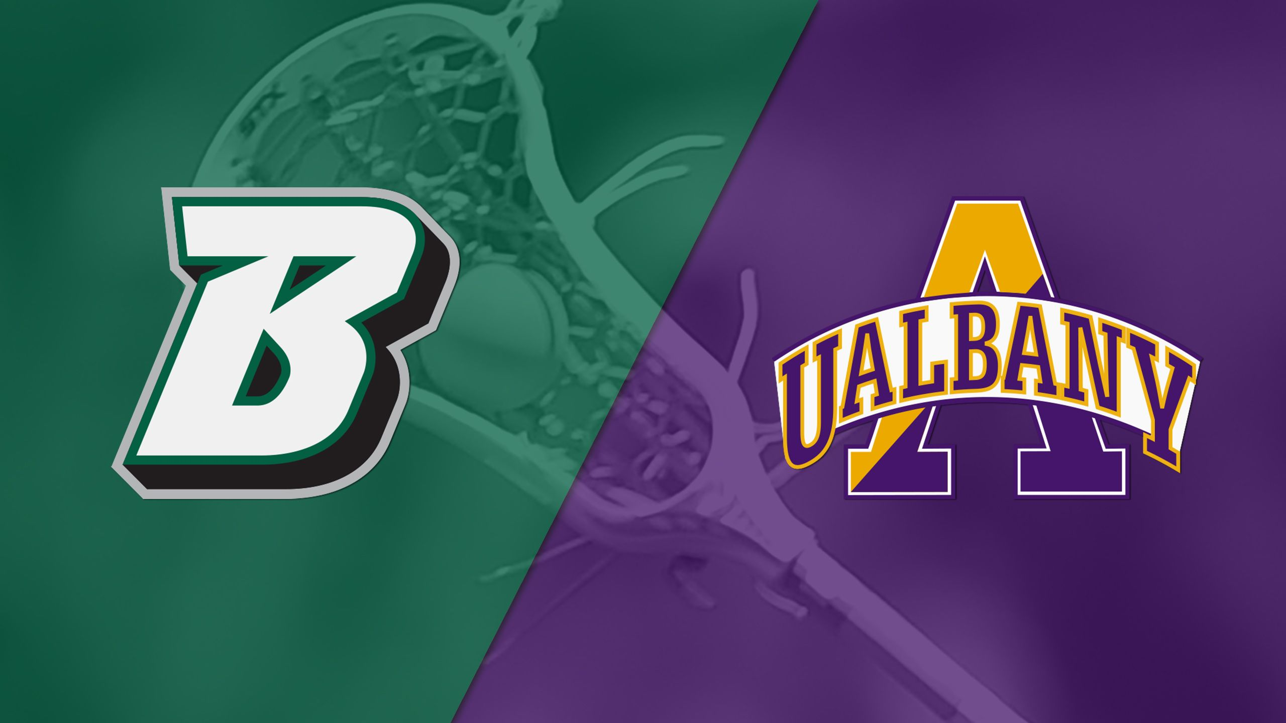 Binghamton vs. #5 Albany (Championship) (America East Men's Lacrosse Championship)