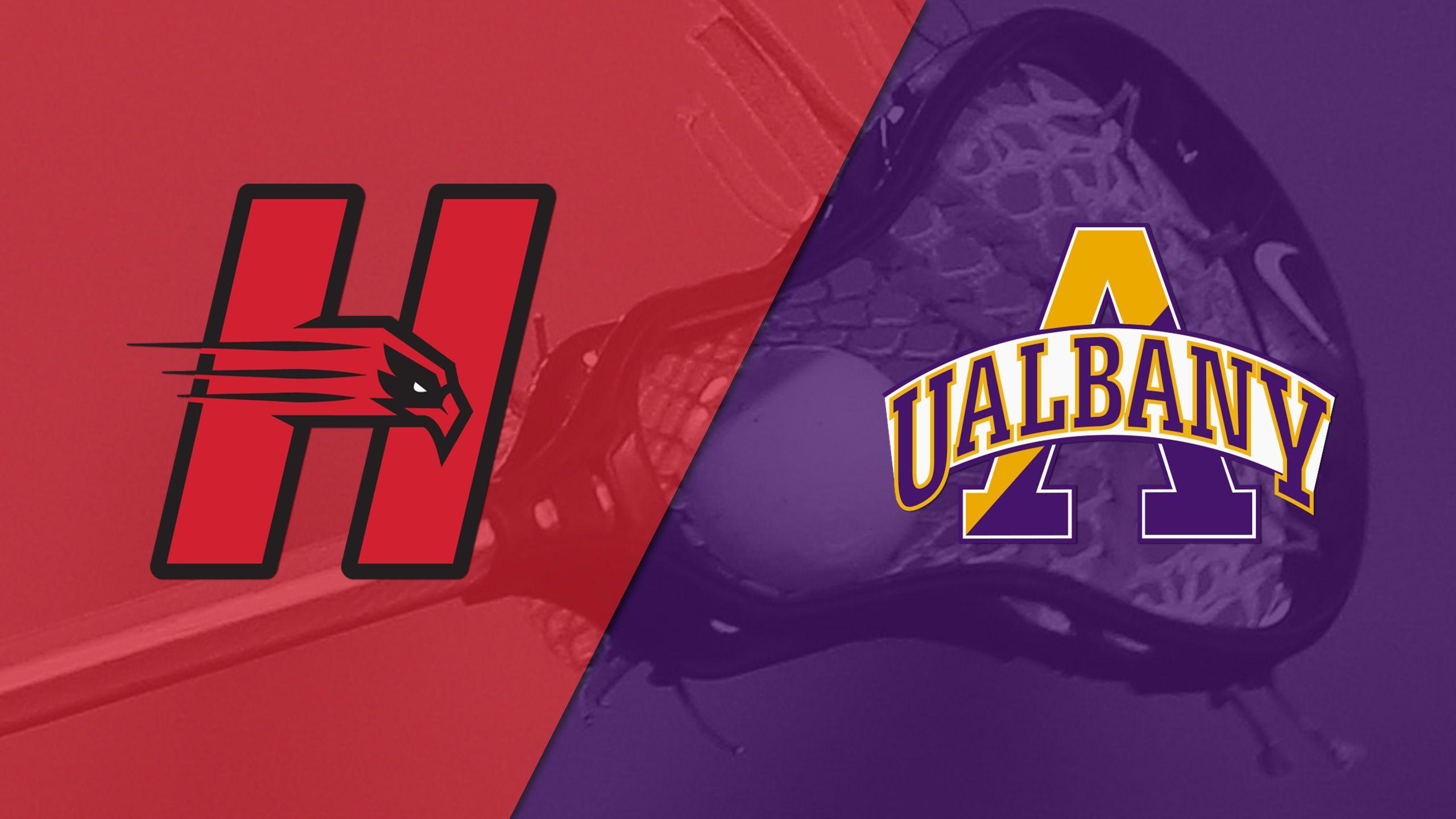 Hartford vs. #6 Albany (M Lacrosse)