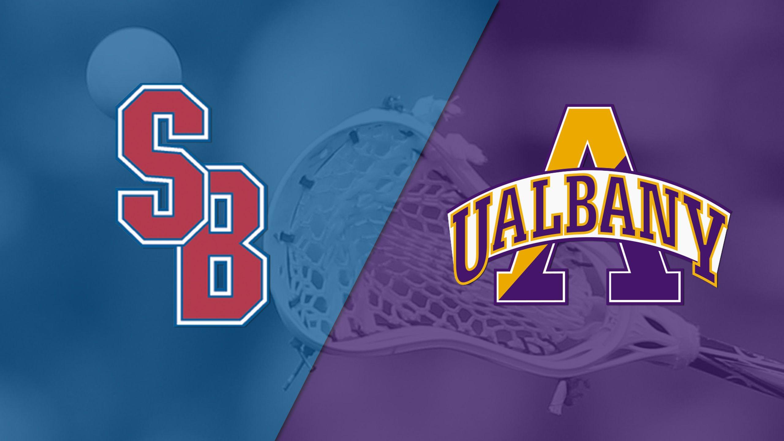 Stony Brook vs. #5 Albany (America East Men's Lacrosse Championship)