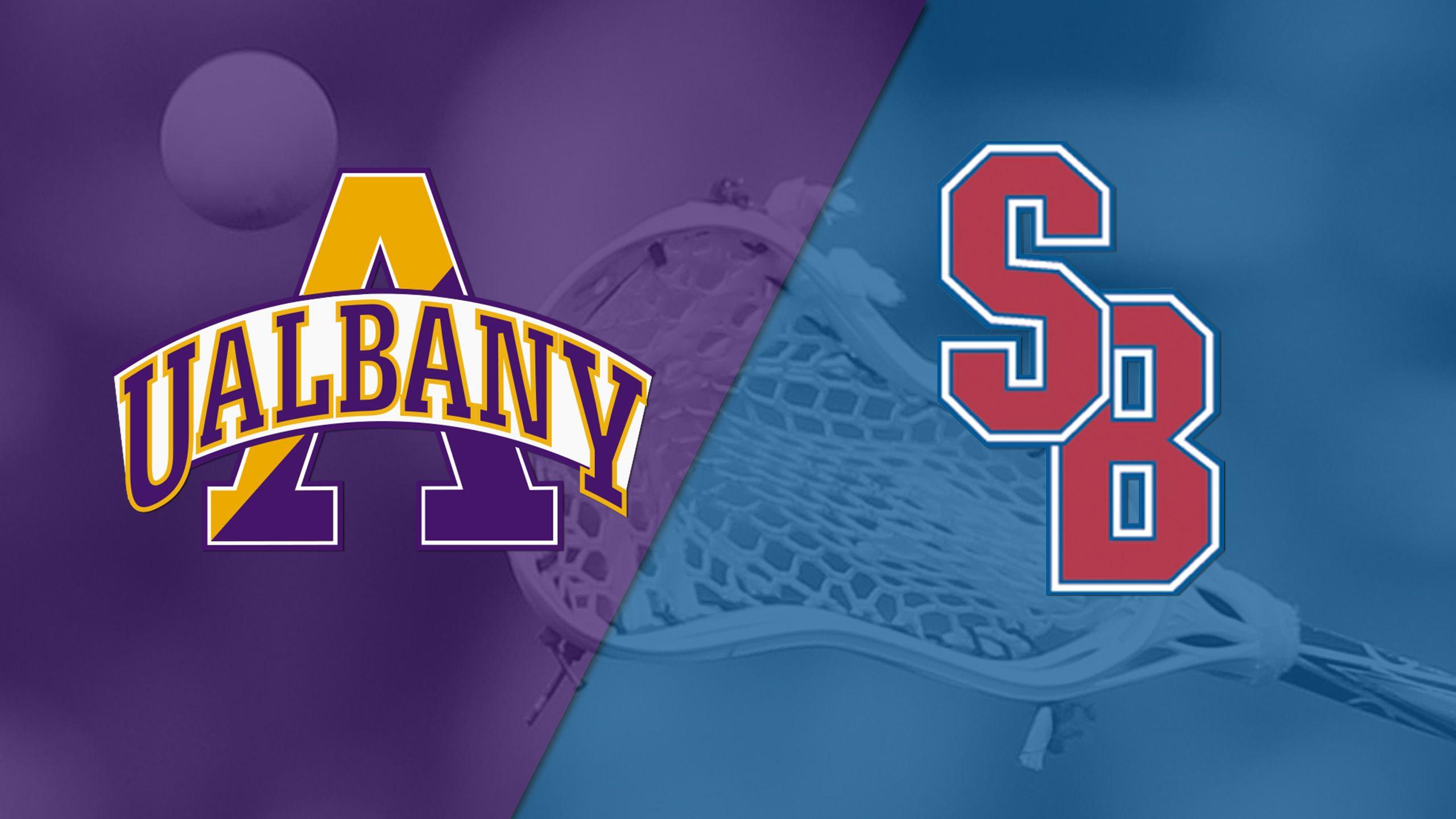 Albany vs. Stony Brook (Championship) (America East Women's Lacrosse Championship)