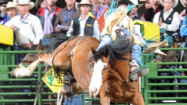 College National Finals Rodeo Watchespn