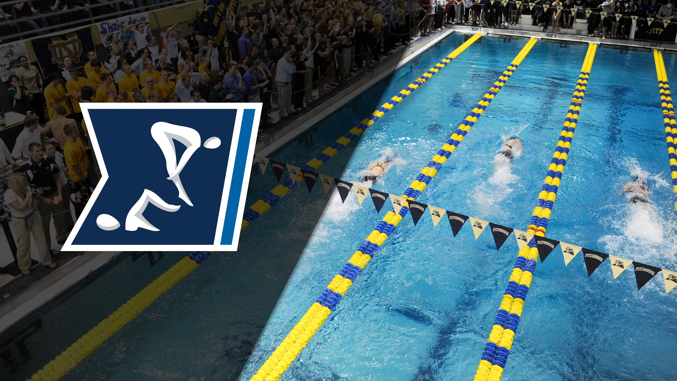 ACC Tournament: Men's Swimming