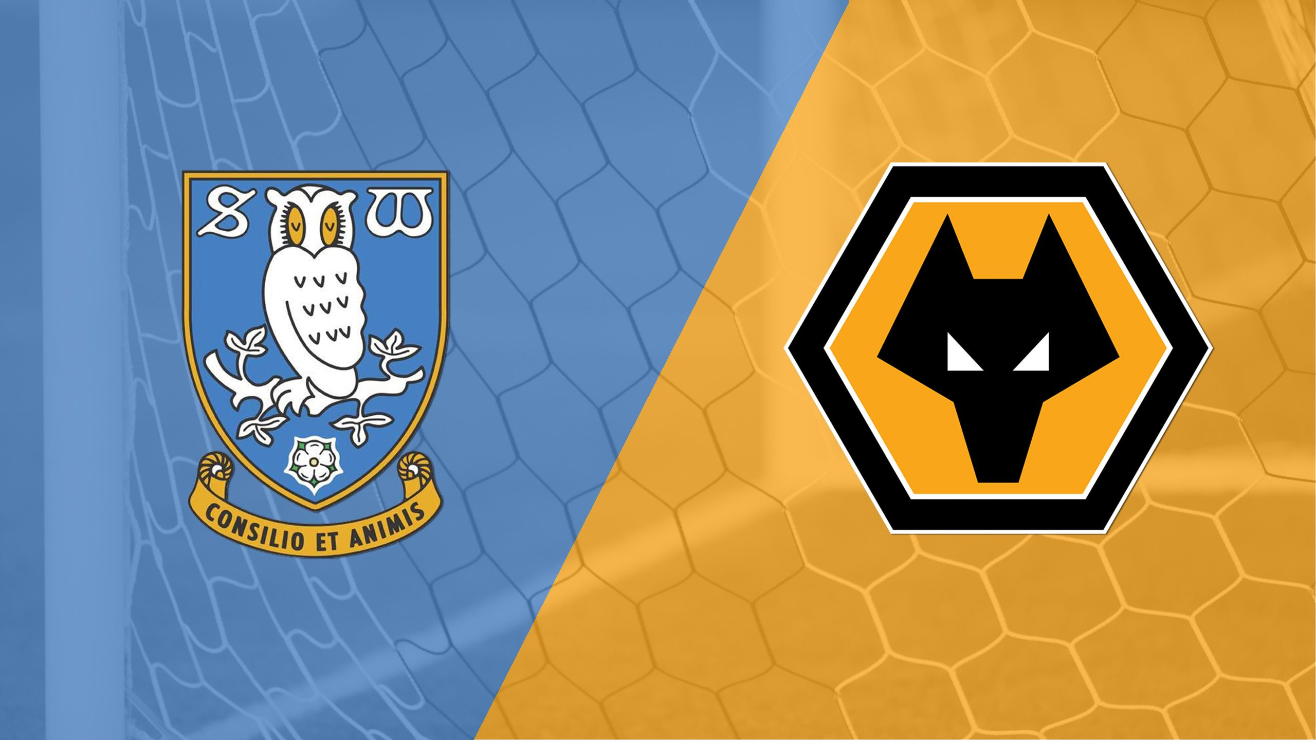 Sheffield Wednesday vs. Wolverhampton Wanderers (English League Championship)
