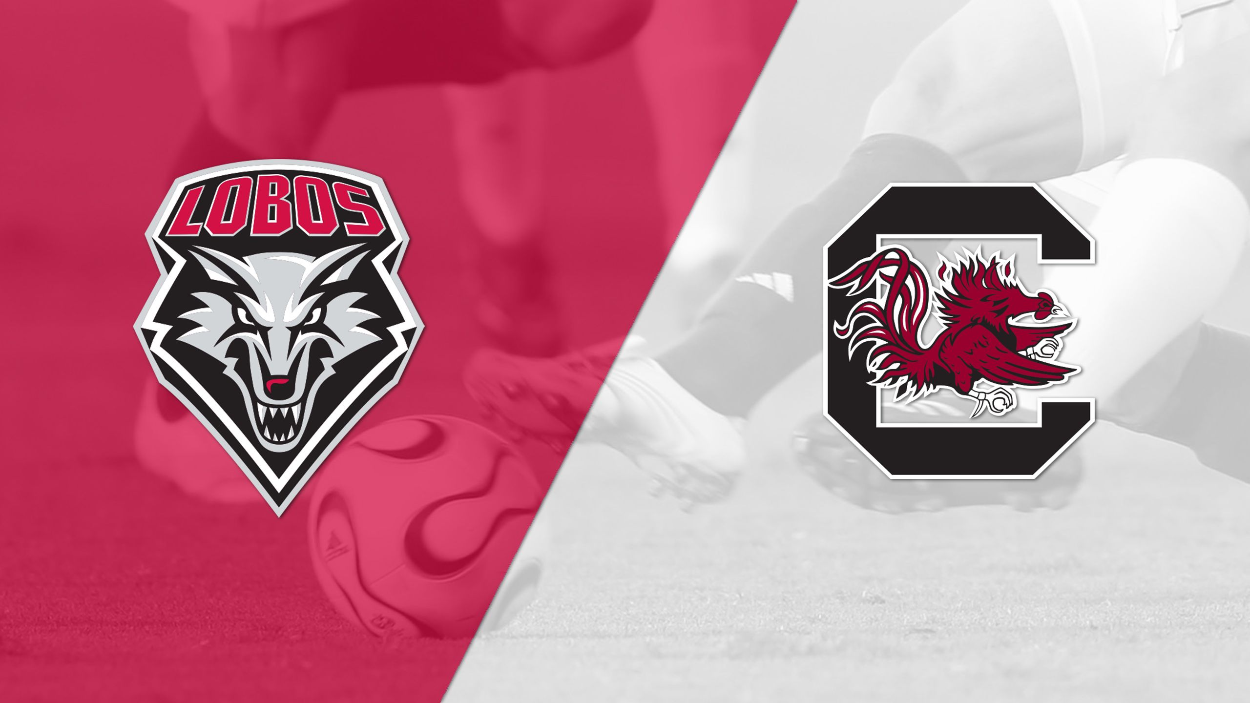 New Mexico vs. South Carolina (M Soccer)