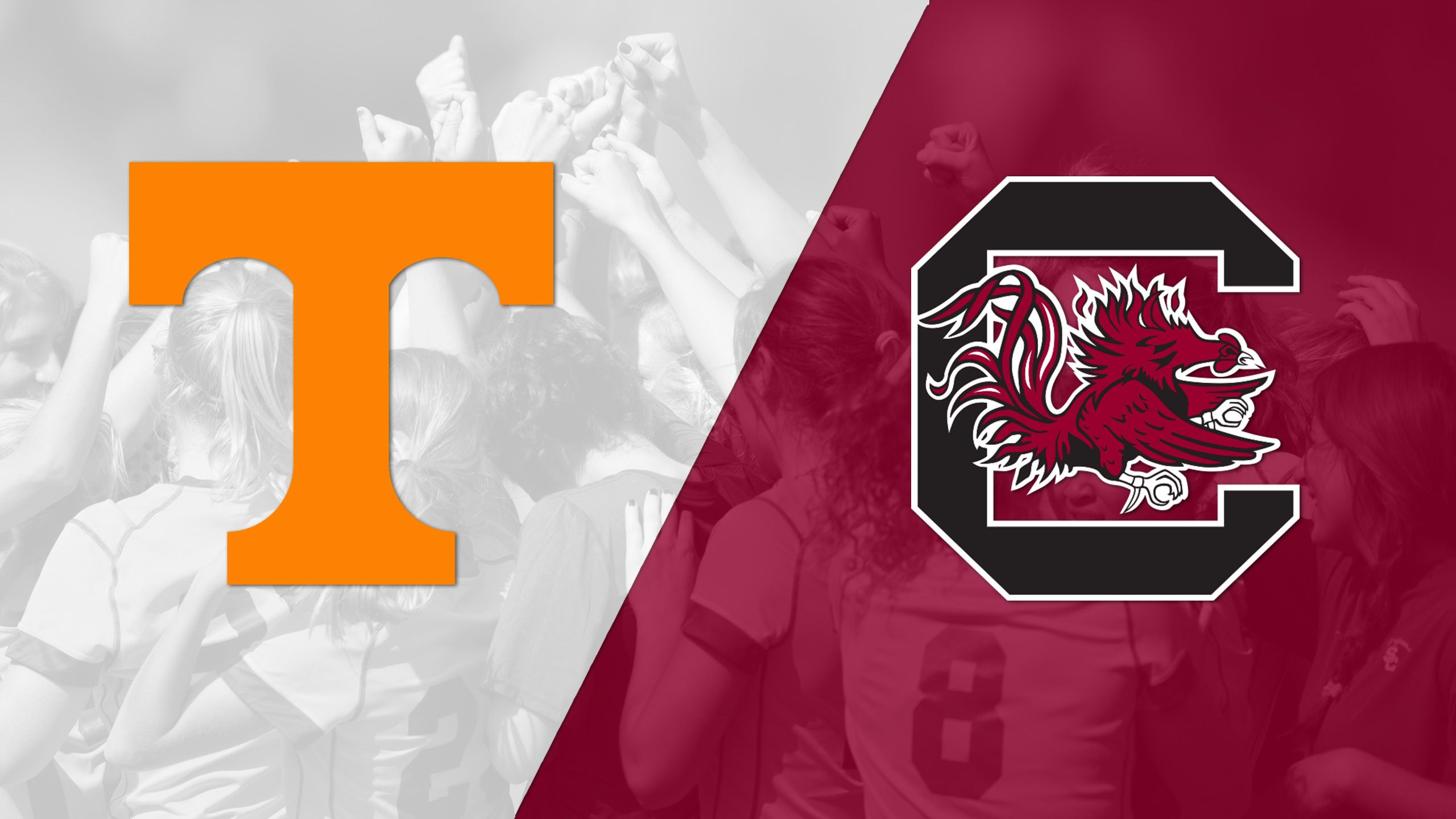 #21 Tennessee vs. #3 South Carolina (W Soccer)