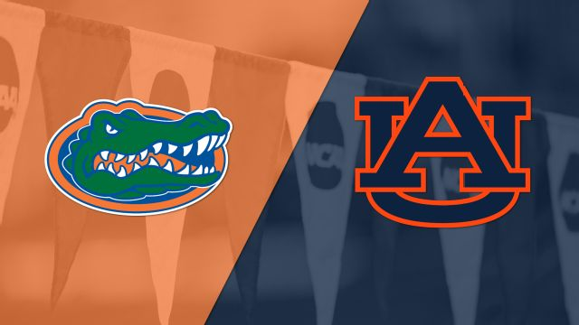 Florida vs. Auburn (Swimming)