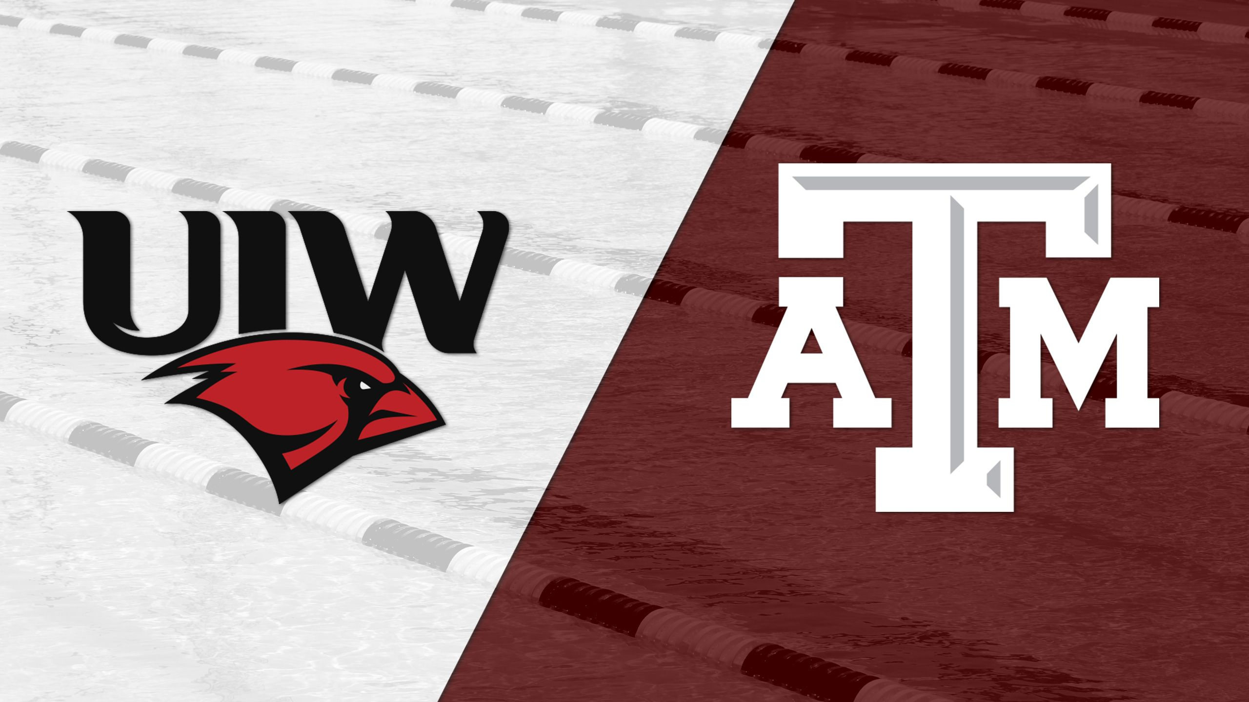 Incarnate Word vs. Texas A&M (Swimming and Diving)