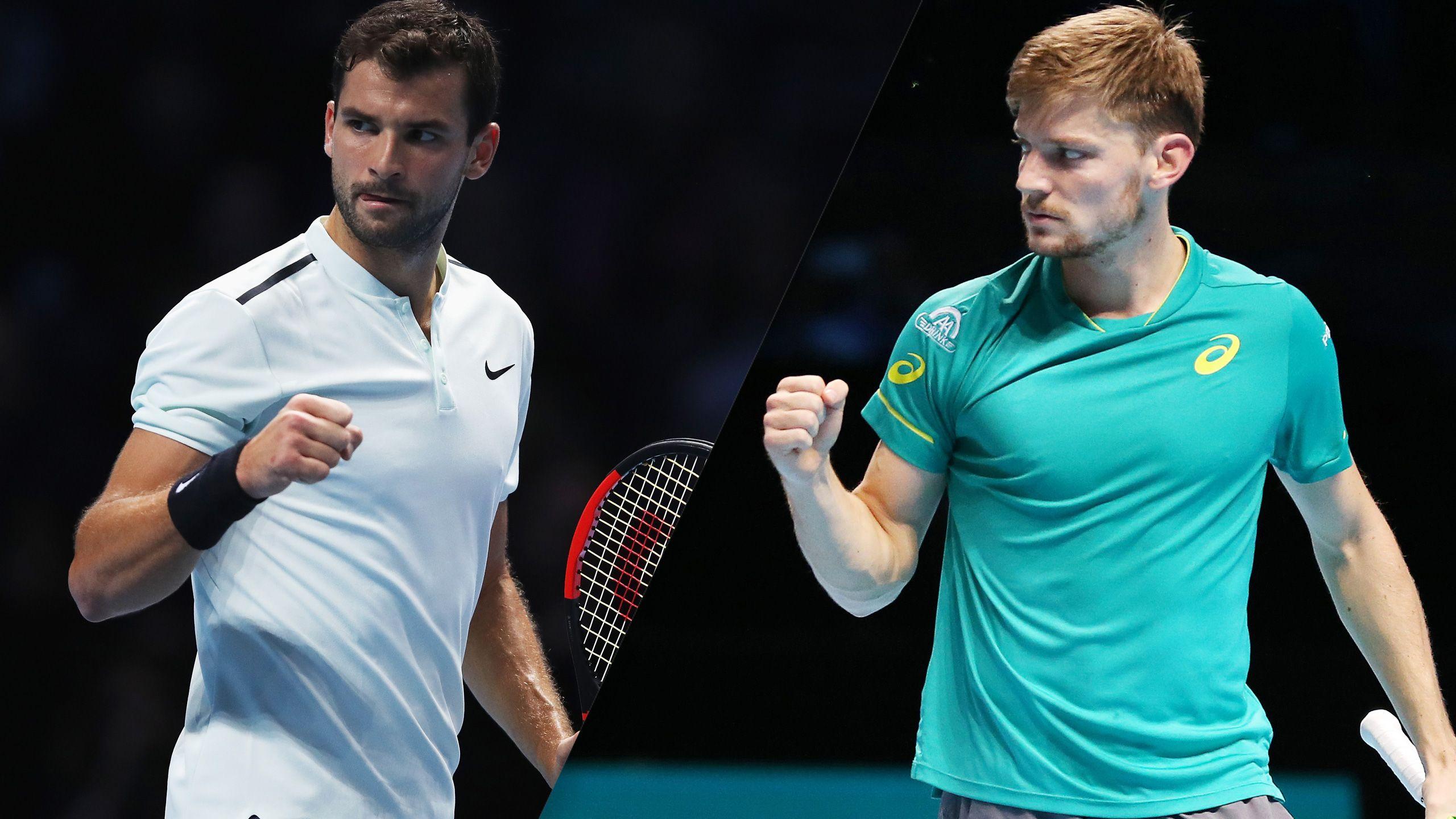 G. Dimitrov vs. D. Goffin - Nitto ATP Finals (Championship)