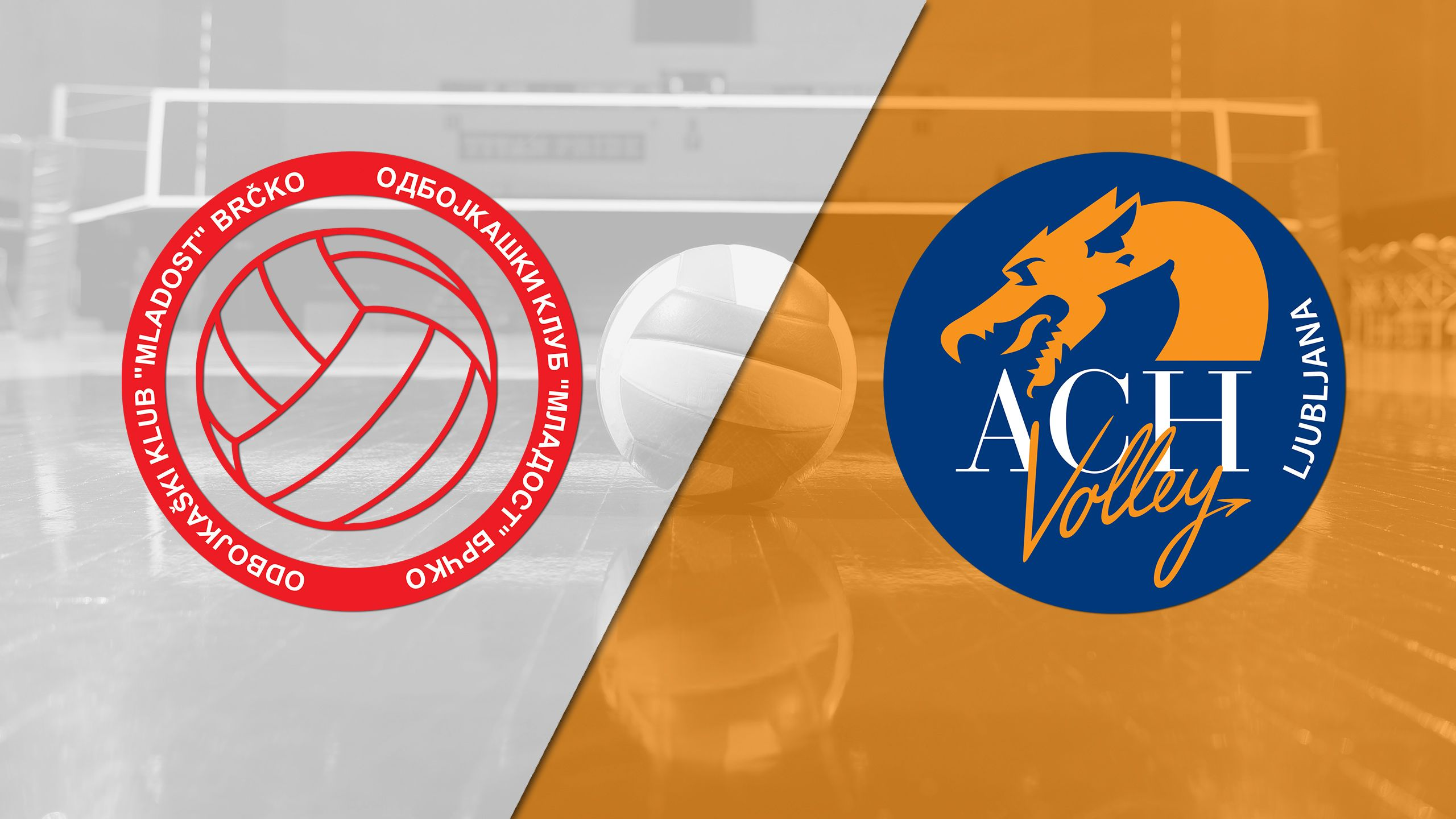 Ok Mladost Brcko vs. ACH Volley Ljubljana (CEV Men's Champions League)