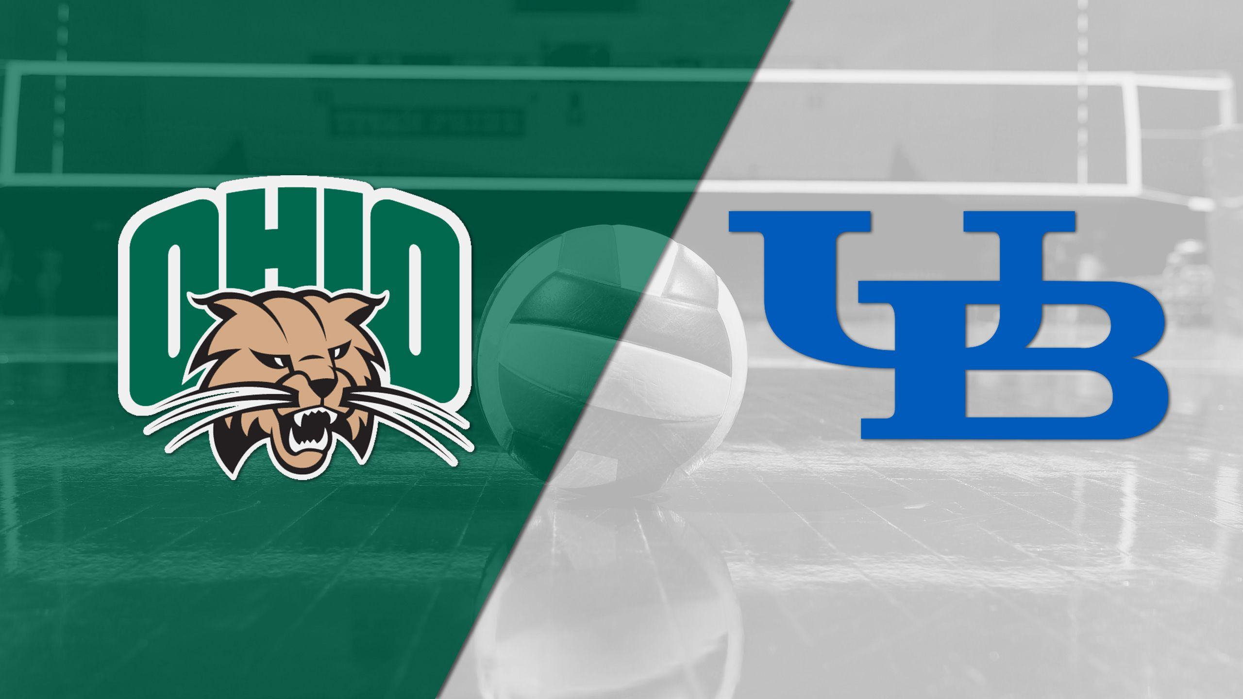 Ohio vs. Buffalo (W Volleyball)