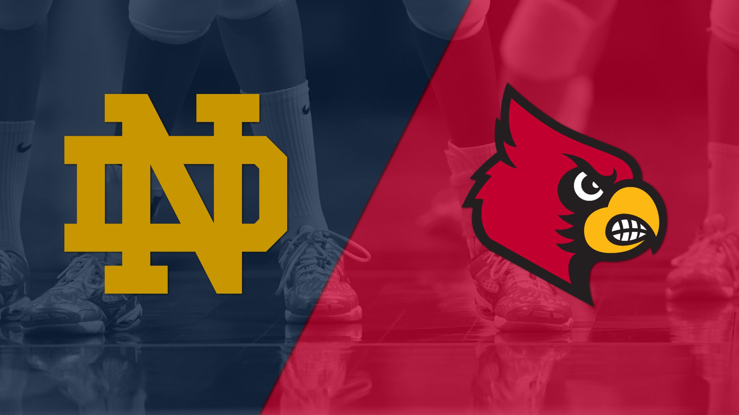 Notre Dame vs. Louisville (W Volleyball)