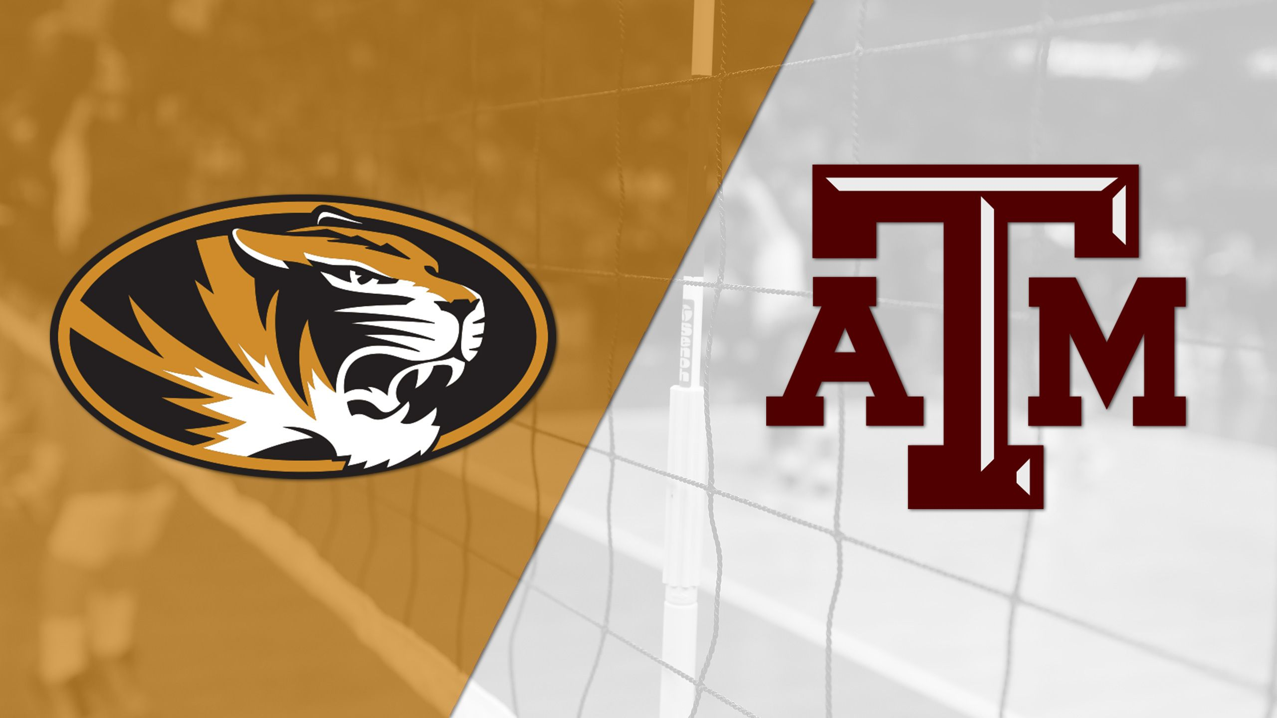 Missouri vs. Texas A&M (W Volleyball)