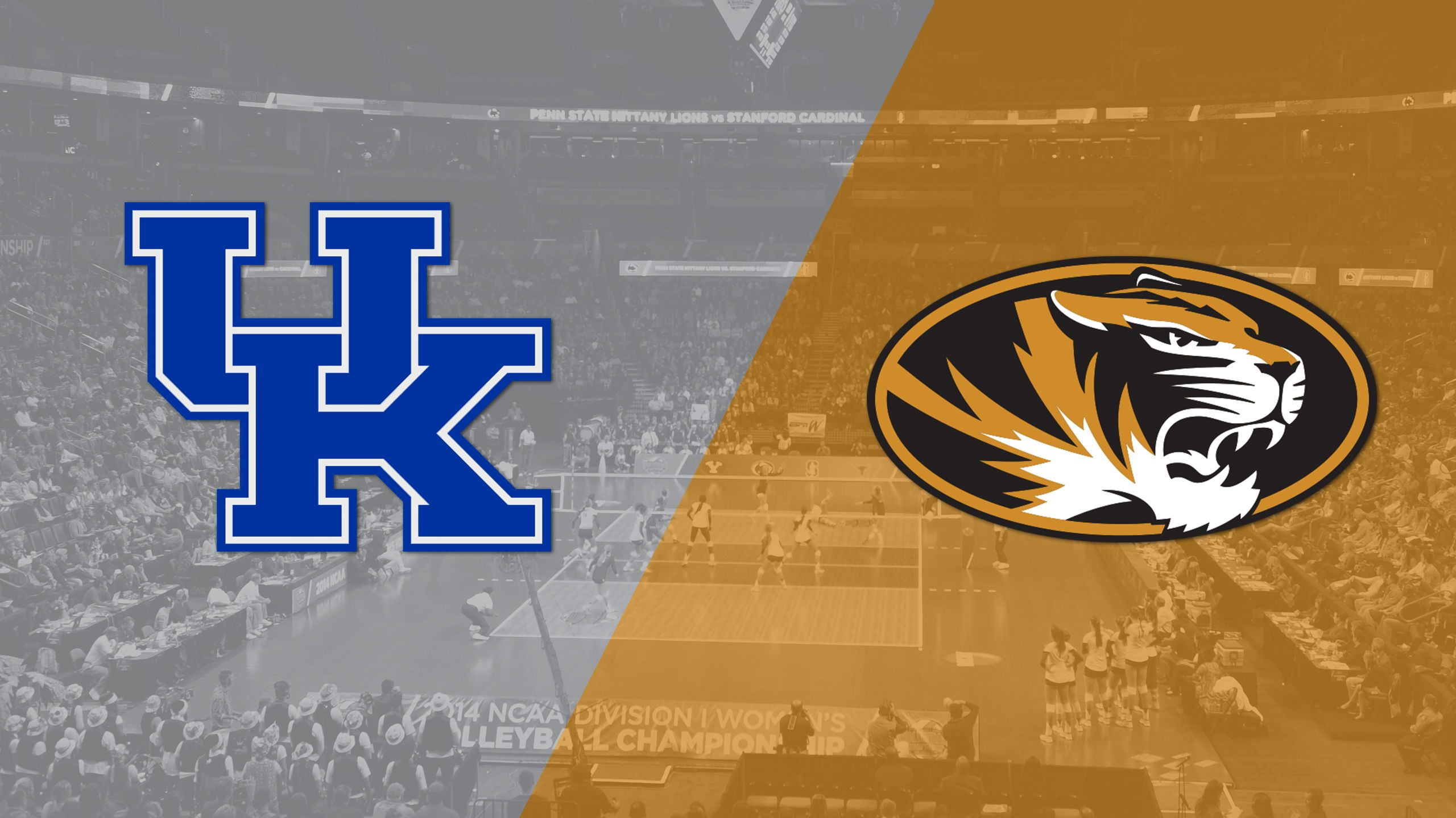 #10 Kentucky vs. Missouri (W Volleyball) (re-air)