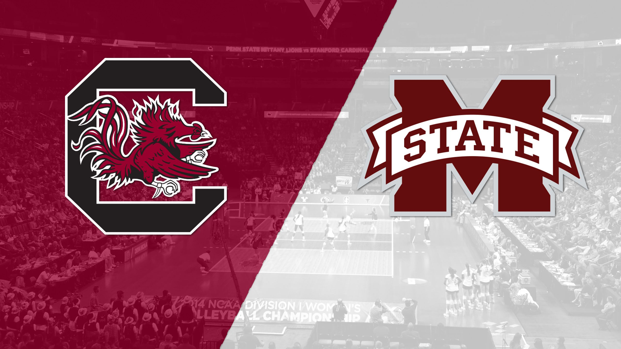 South Carolina vs. Mississippi State (W Volleyball)