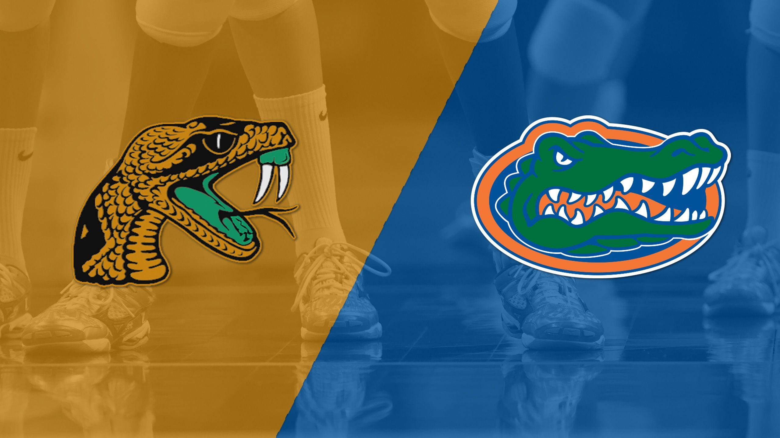 Florida A&M vs. #3 Florida (W Volleyball)