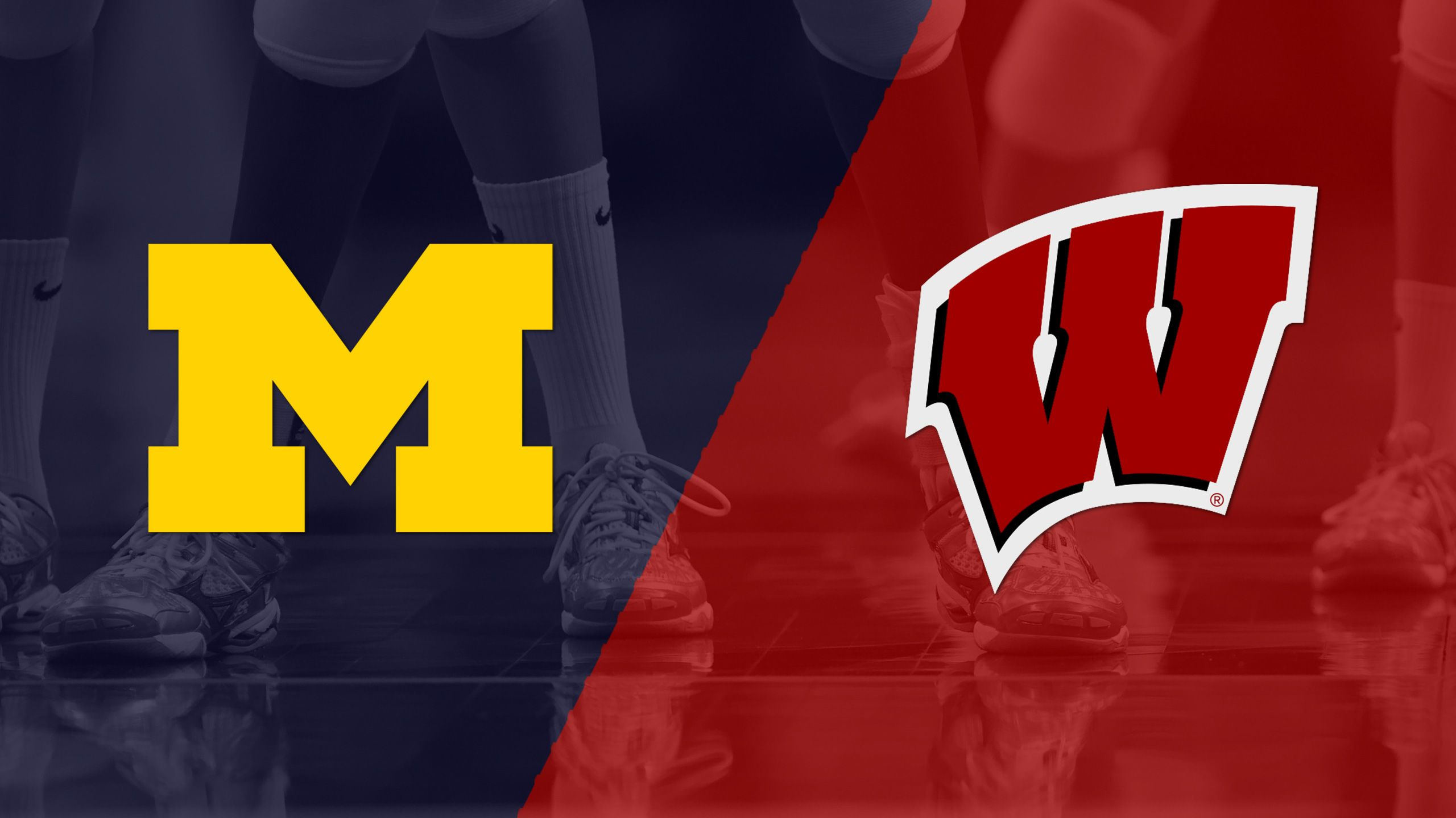 #20 Michigan vs. #5 Wisconsin (W Volleyball)