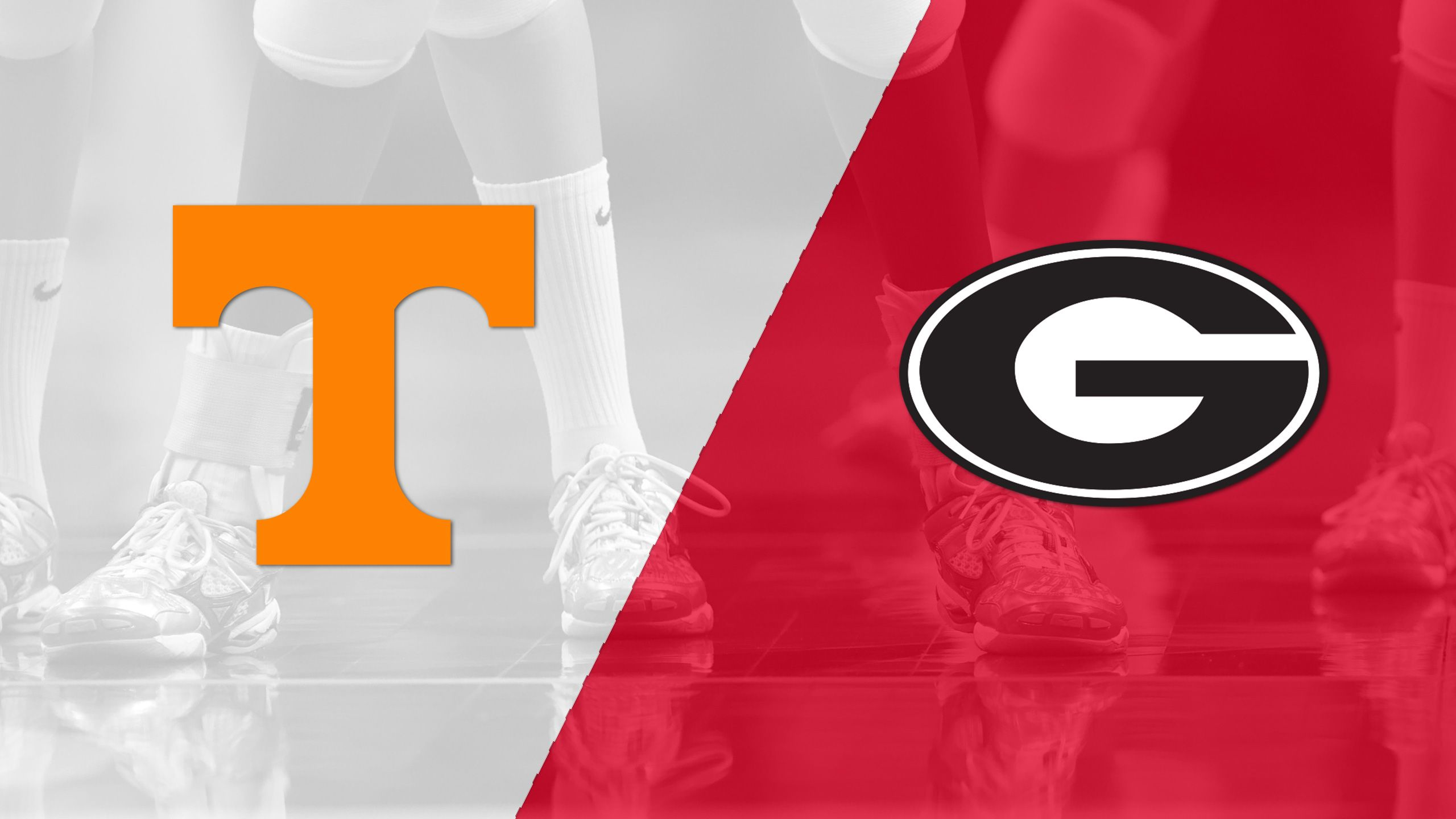 Tennessee vs. Georgia (W Volleyball)
