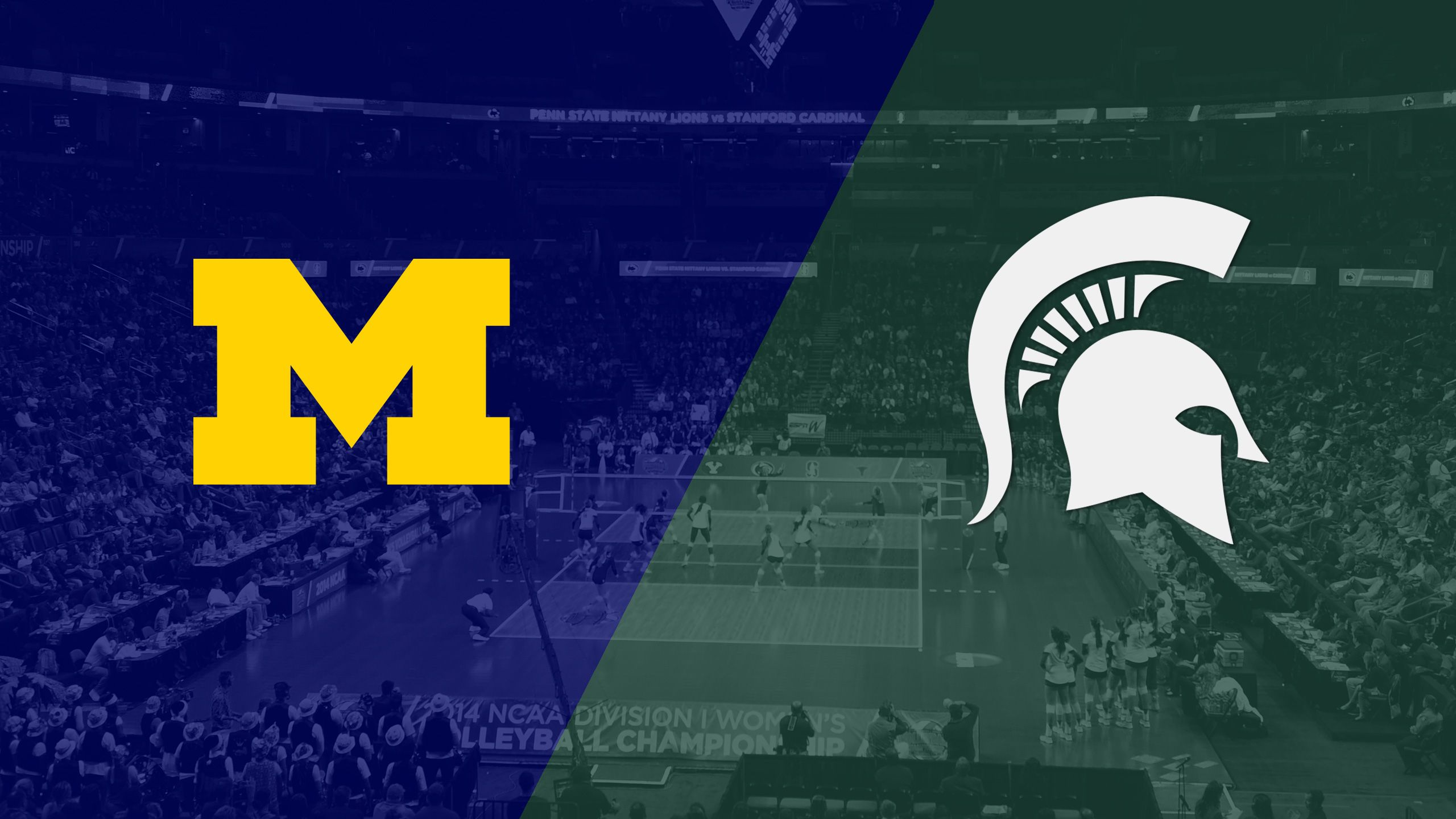 Michigan vs. #10 Michigan State (W Volleyball)