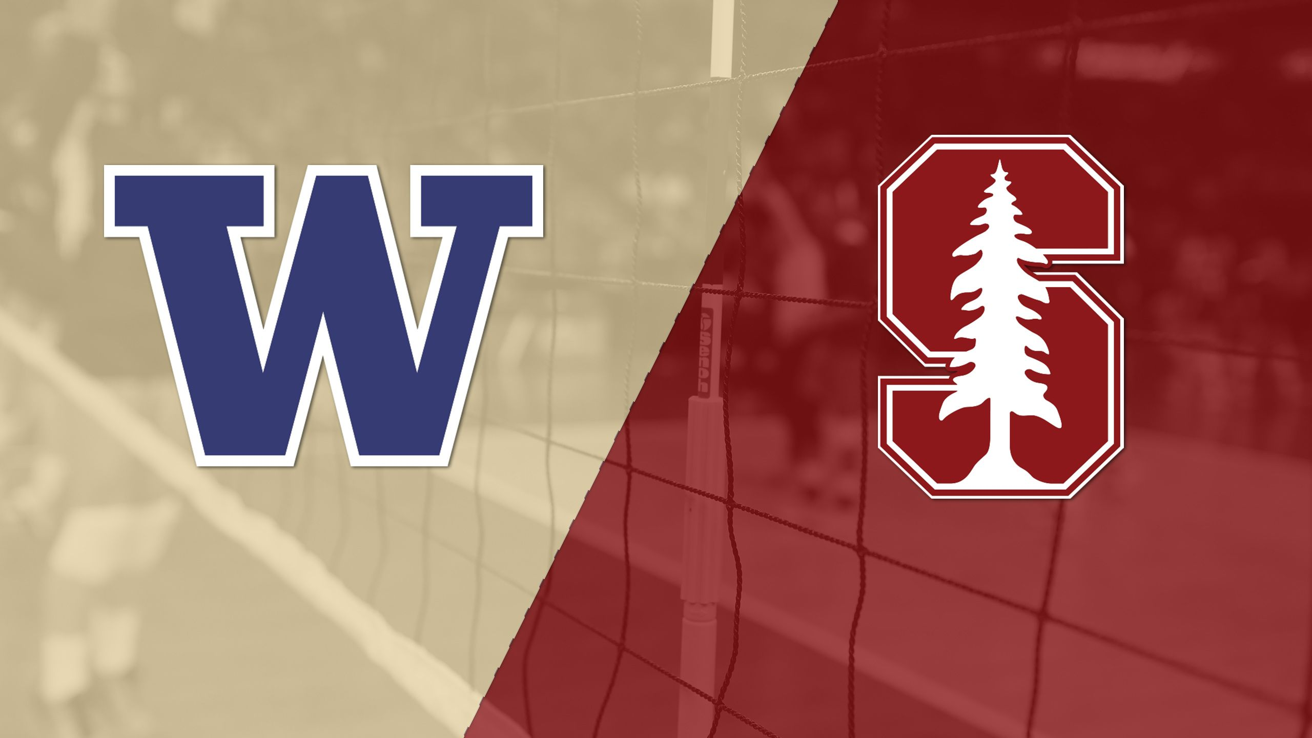 #14 Washington vs. #2 Stanford (W Volleyball)